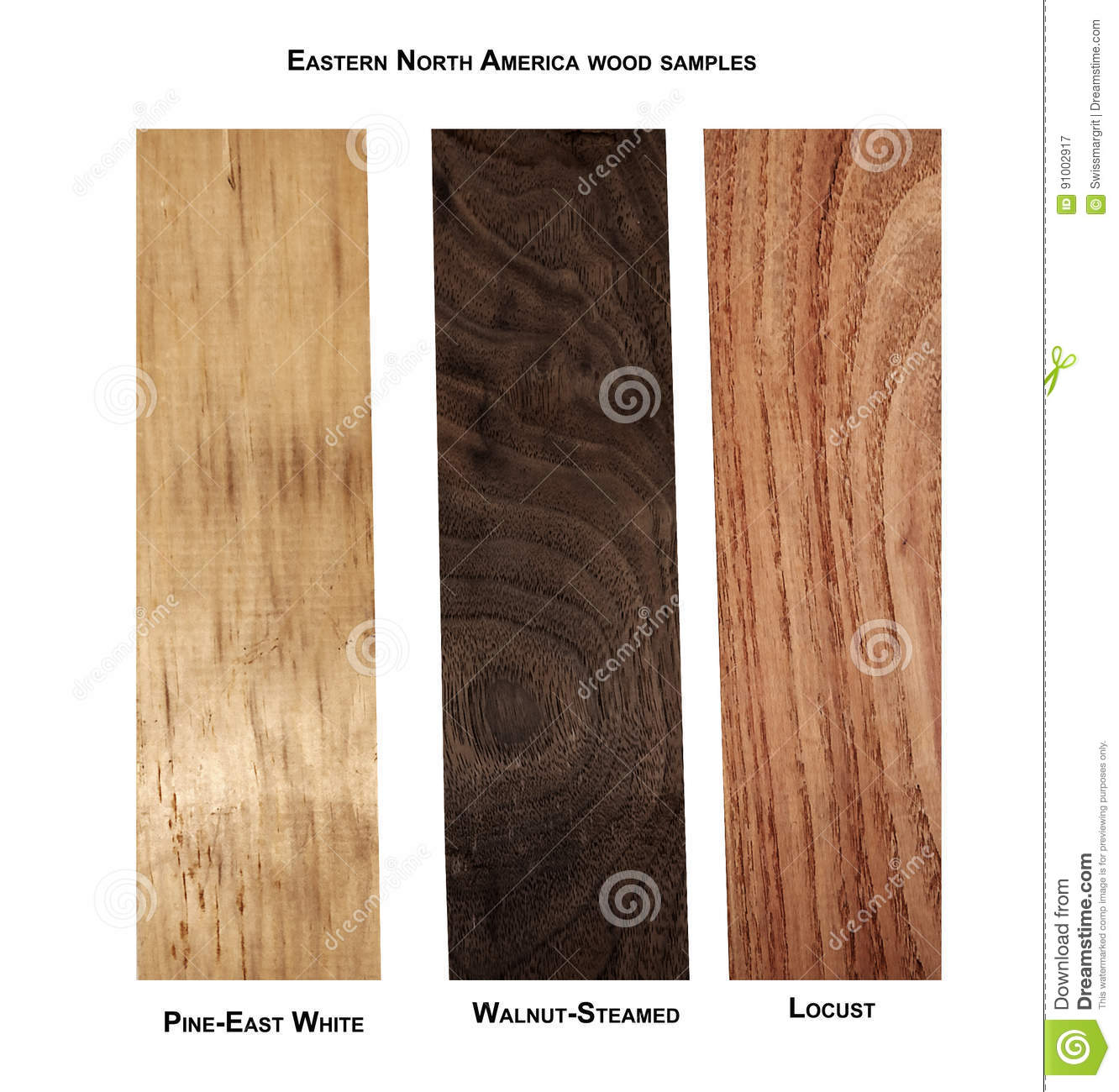 variety of wood samples stock image image of background 91002917