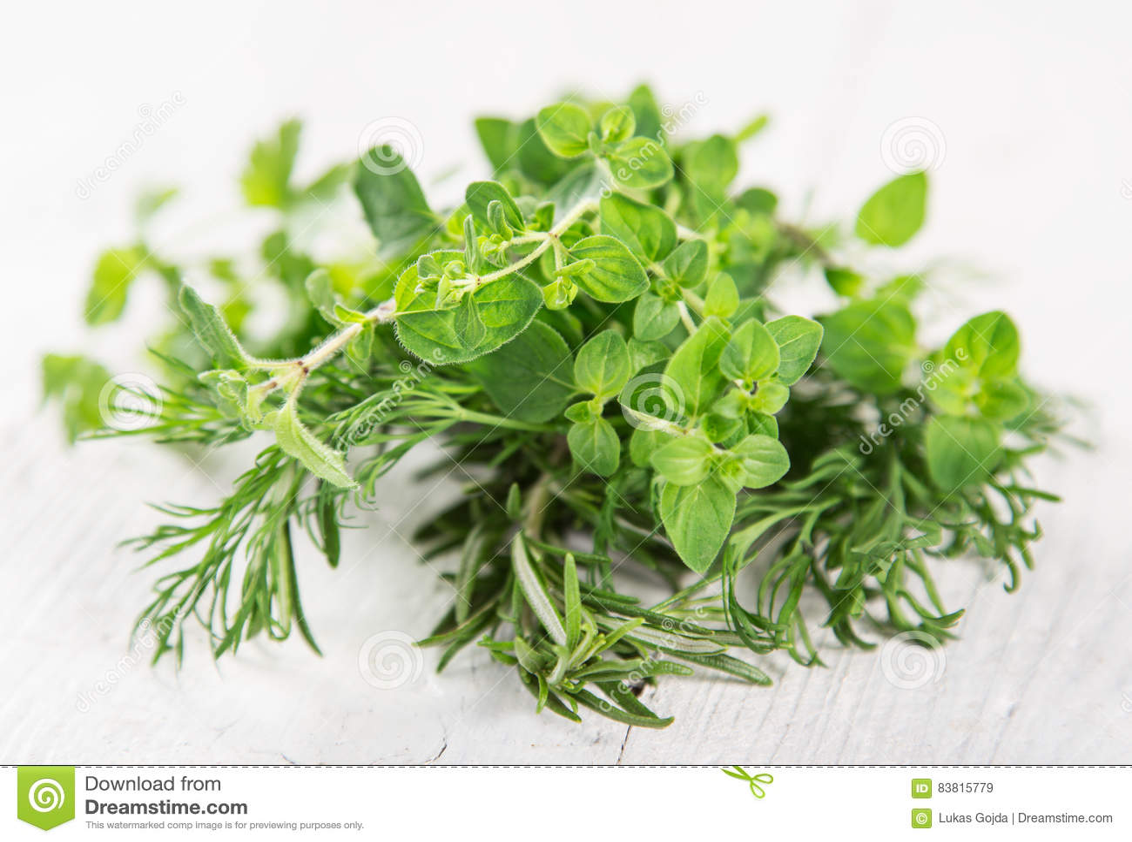 Vario genere di erbe fresche