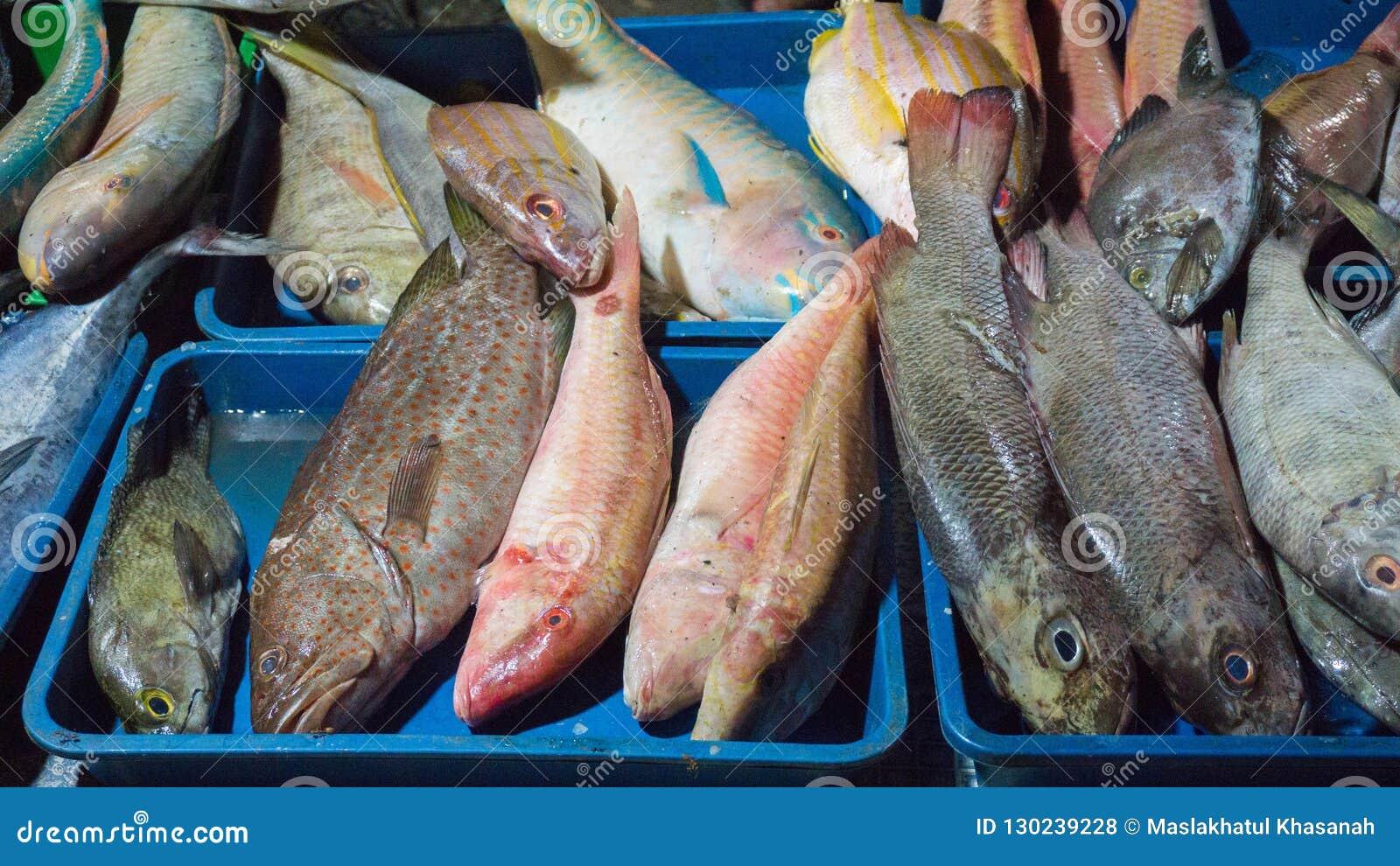 Vario genere di vendita del pesce sul mercato tradizionale in Indonesia