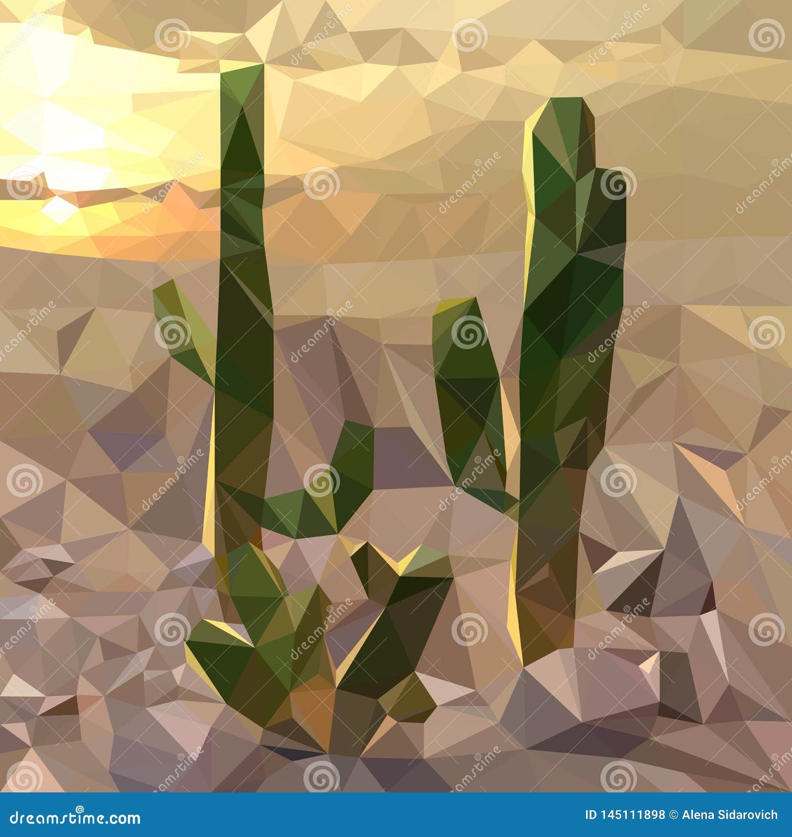 Varios cactus en el fondo de la puesta del sol en el desierto, paisaje de la tarde, mosaico multicolor