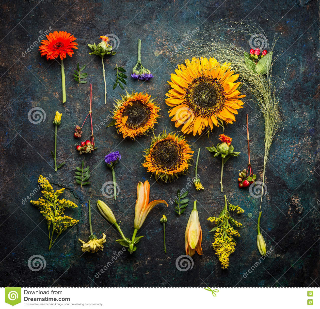 Various autumn plant and flowers on dark vintage background, top view