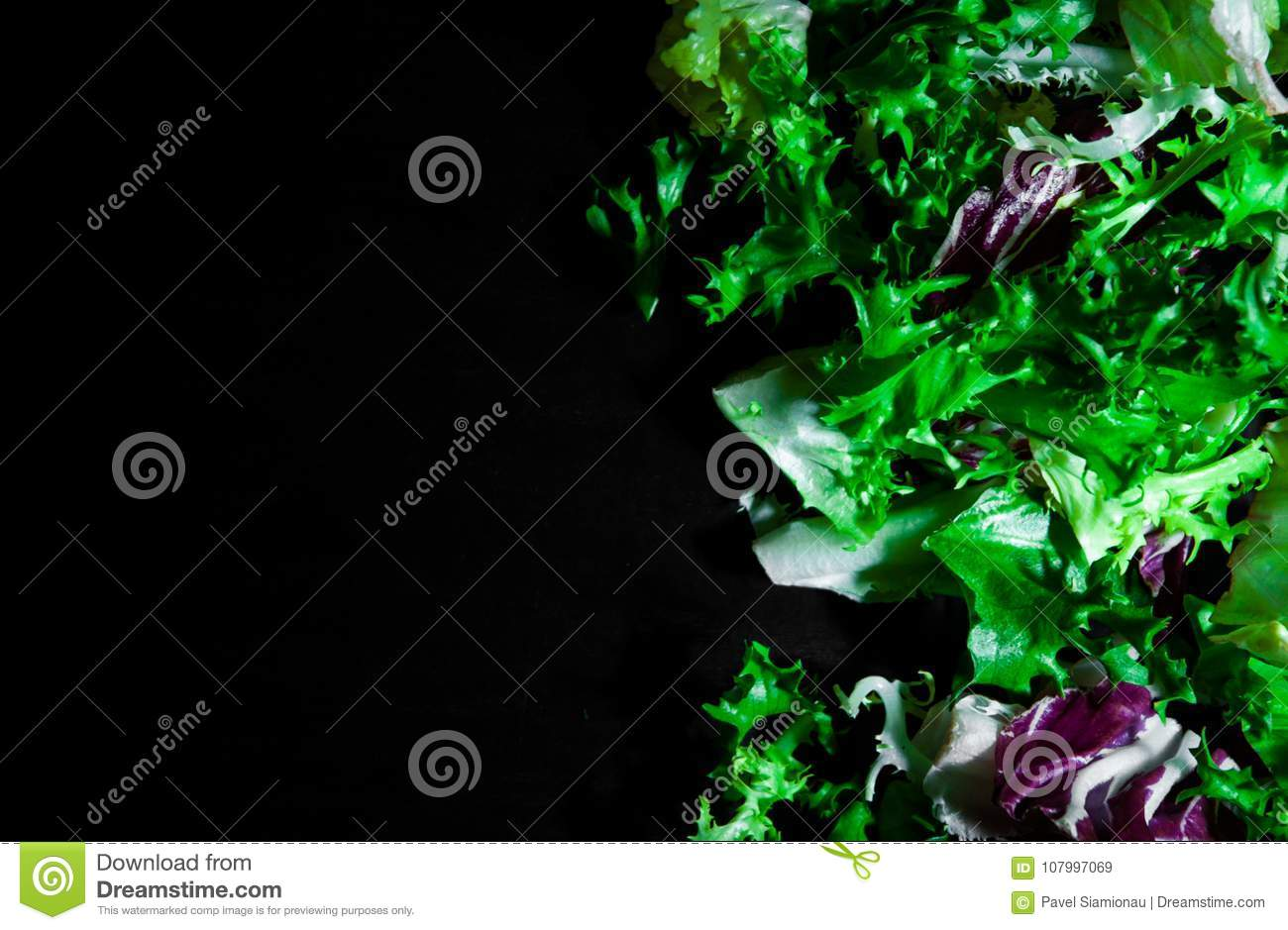 Various fresh salad leaves with lettuce, radicchio, and rocket on dark wooden background with copy space