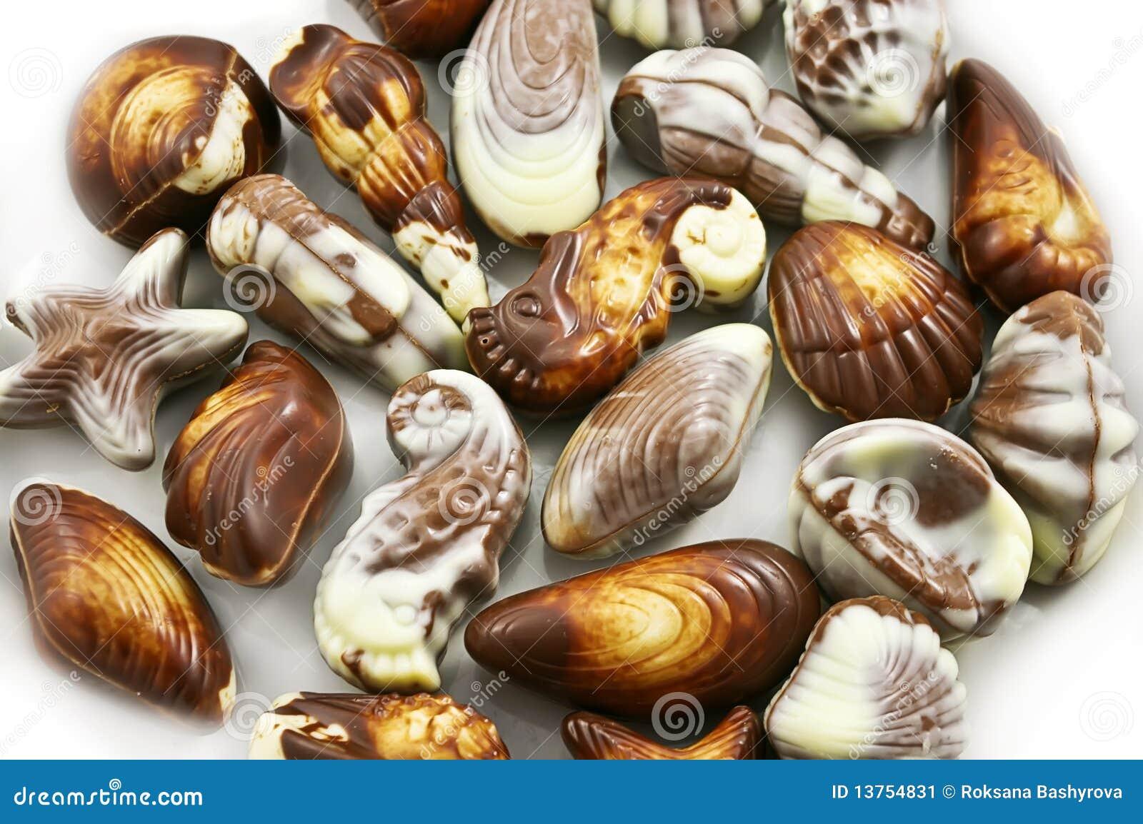 Various Kinds Of Chocolate Seashells Stock Image - Image: 13754831