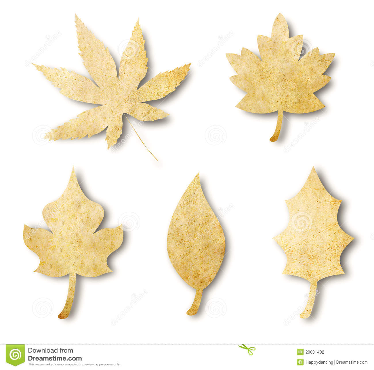 various leaf shape from paper stock photography
