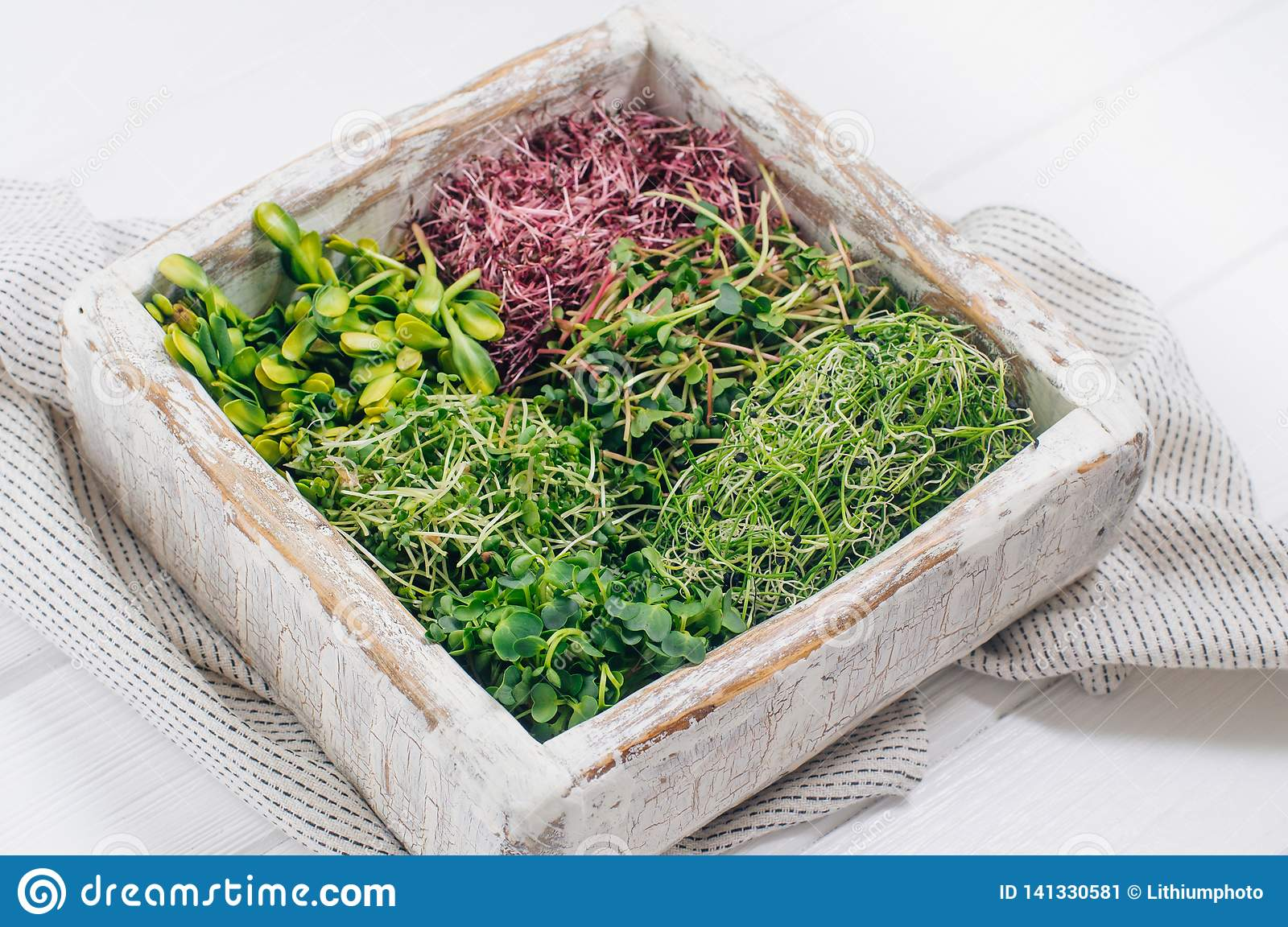 Various micro greens sprouts in wooden box