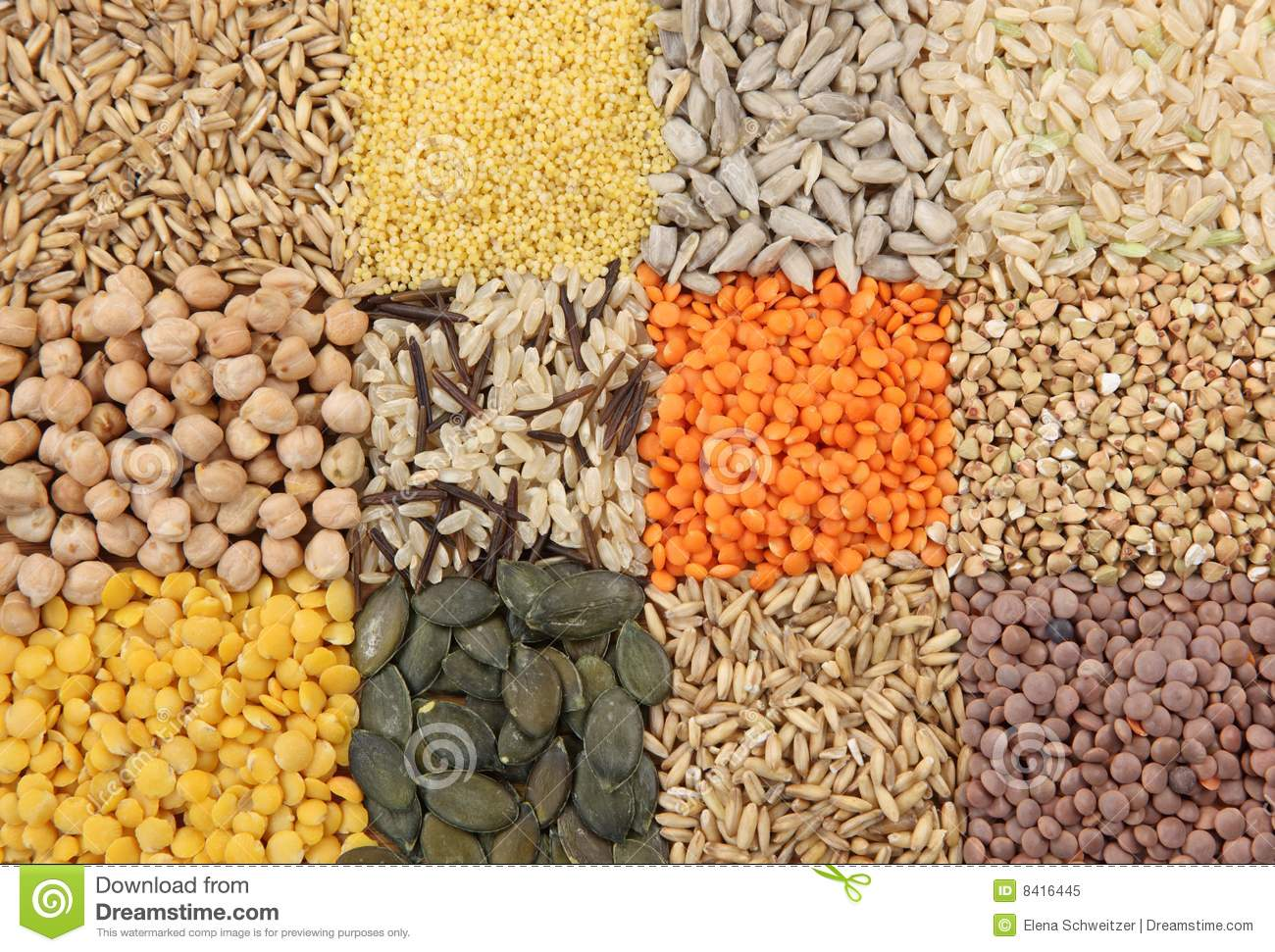 various seeds and grains royalty free stock photo image bow clipart public domain vector bow clipart no background