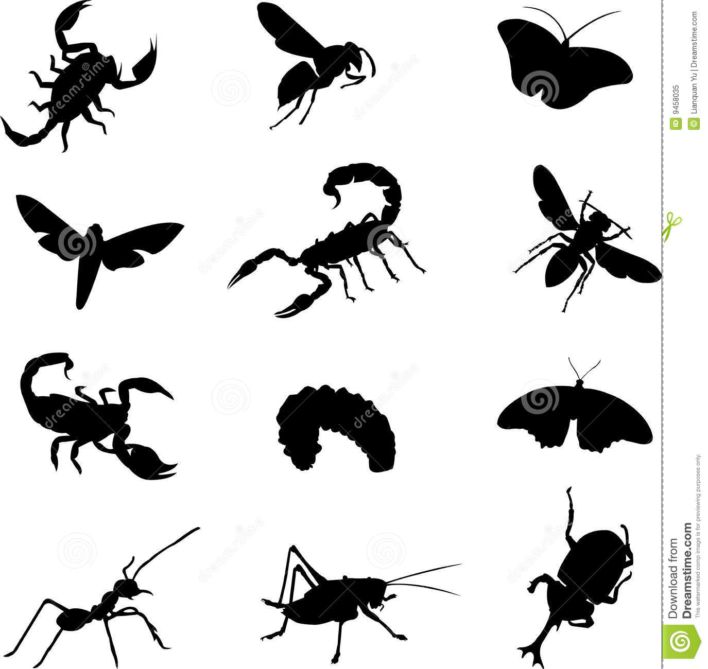 Various Types Of Insects Royalty Free Stock Photo - Image: 9458035