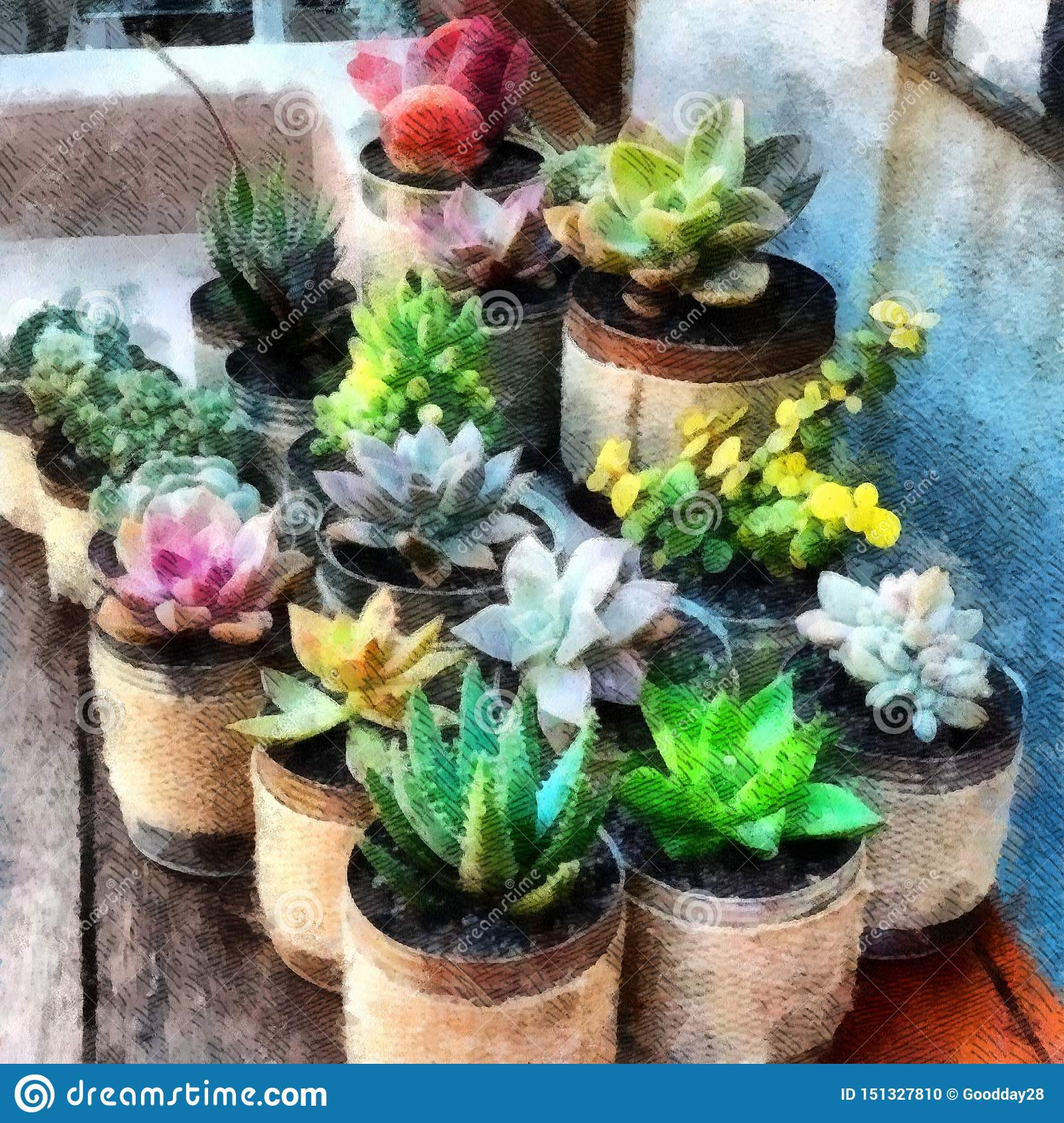 Succulent Plants Clay Pots On Wooden Table Watercolor Painting Wallpaper Background Stock Illustration Illustration Of Paint Nature 151327810