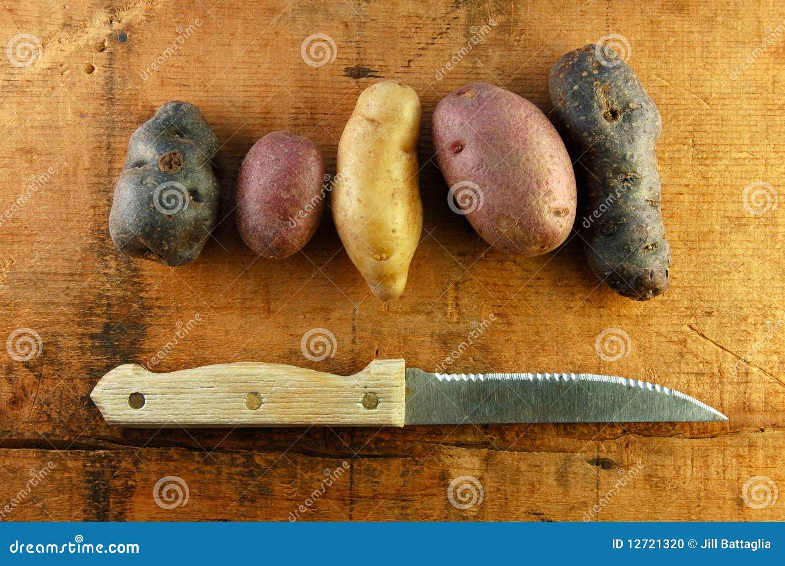 Vari t de pommes de terre de poisson jeune sur le tableau en bois photo stock image 12721320 - Tableau pomme de terre varietes ...