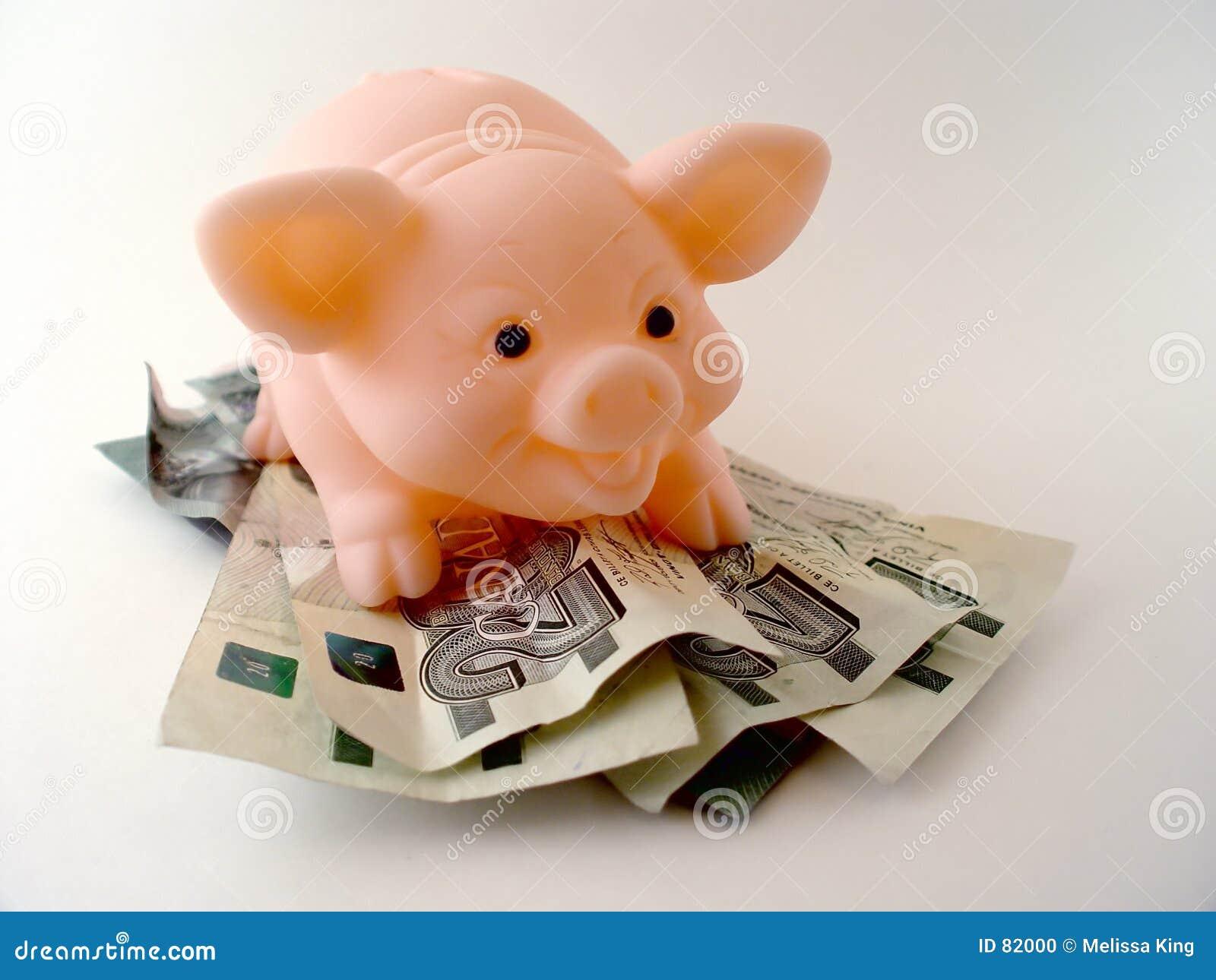 Varken met Geld