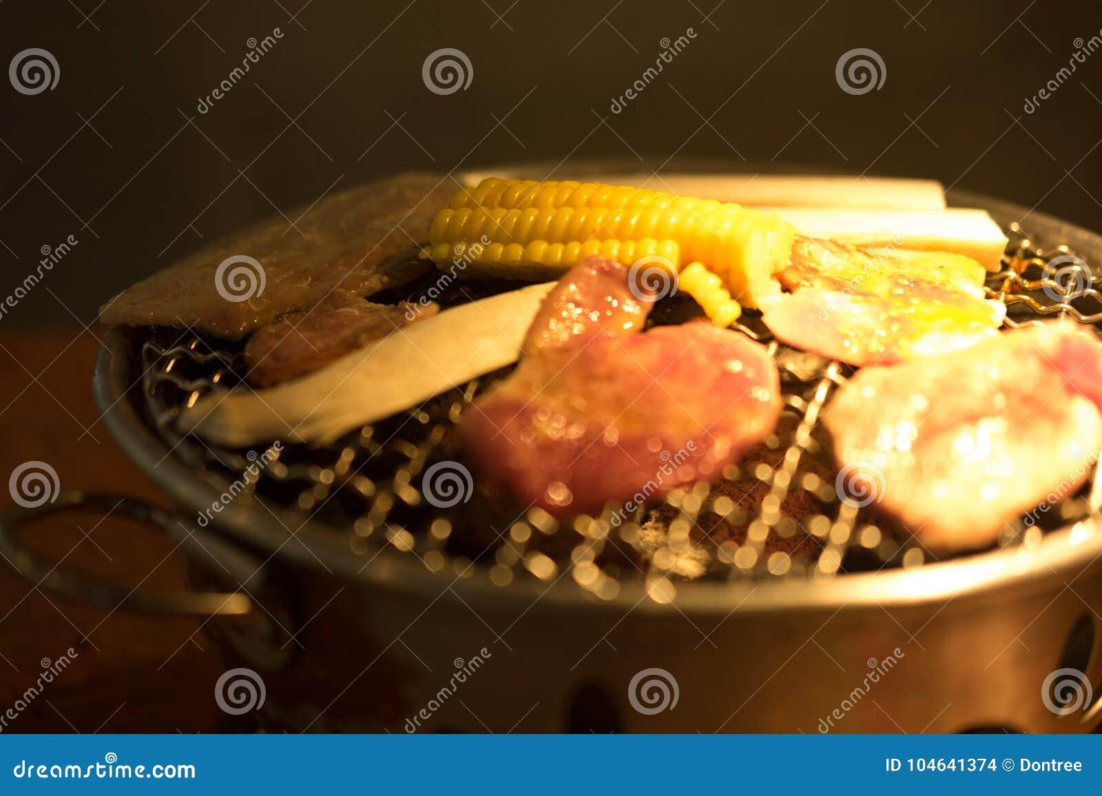 Download Varkensvleesgrill Op Hete Steenkolen Stock Foto - Afbeelding bestaande uit vlees, grill: 104641374