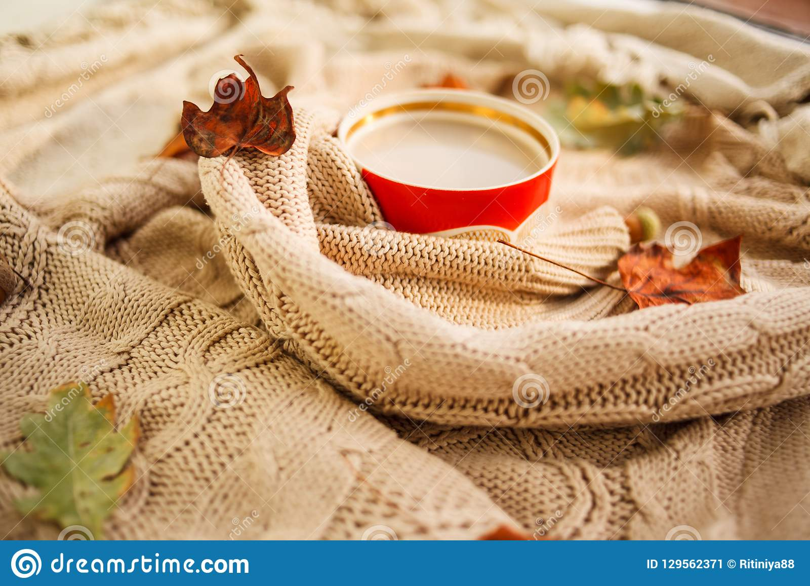 Varm höst kopp kaffe som slås in i en woolen beige tröja 1 livstid fortfarande