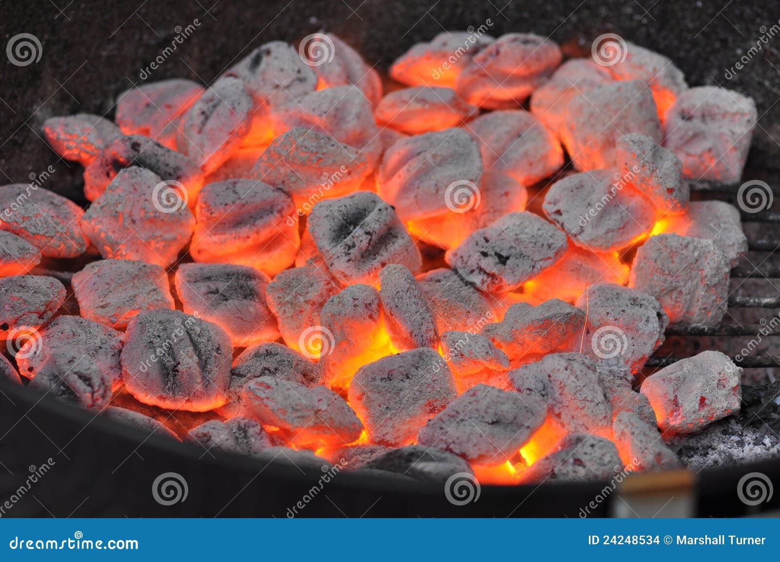Varmt briquetteskol