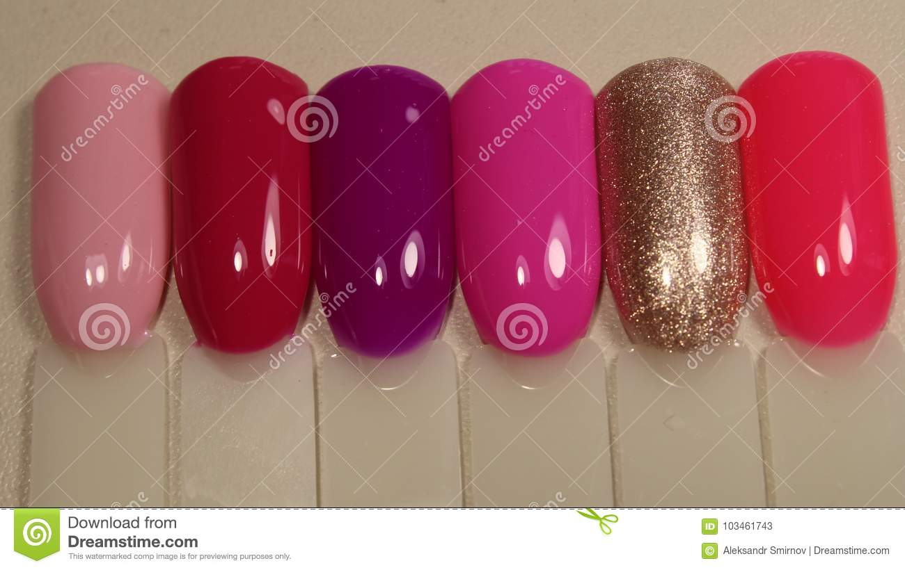 Varnish Color Palette For Nail Stock Image Image Of Salon Beauty