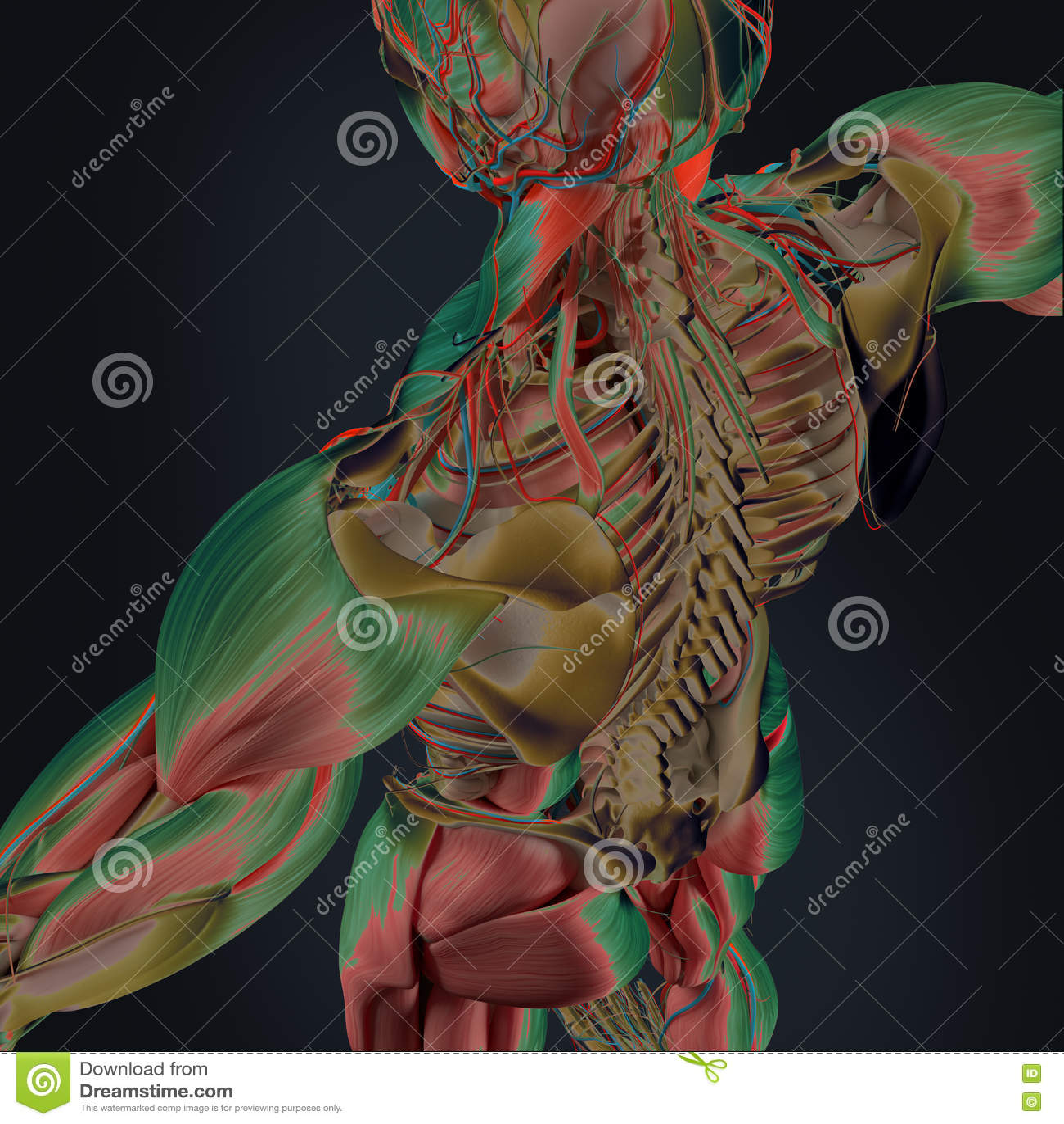 Varredura do corpo
