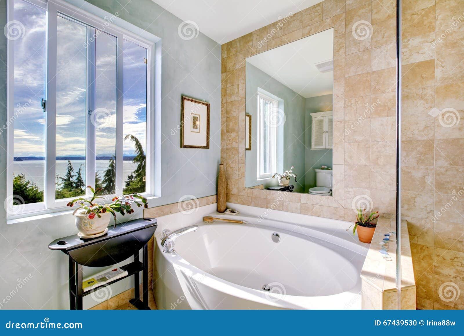 Vasca Ovale Con Il Grande Specchio In Bagno Di Lusso Fotografia