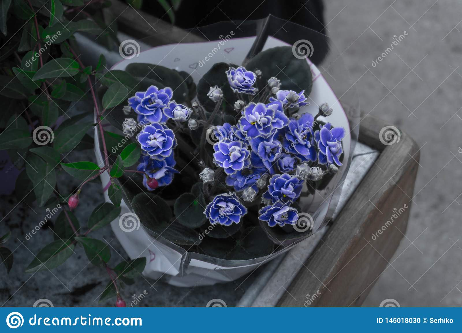 A vase with blue flowers