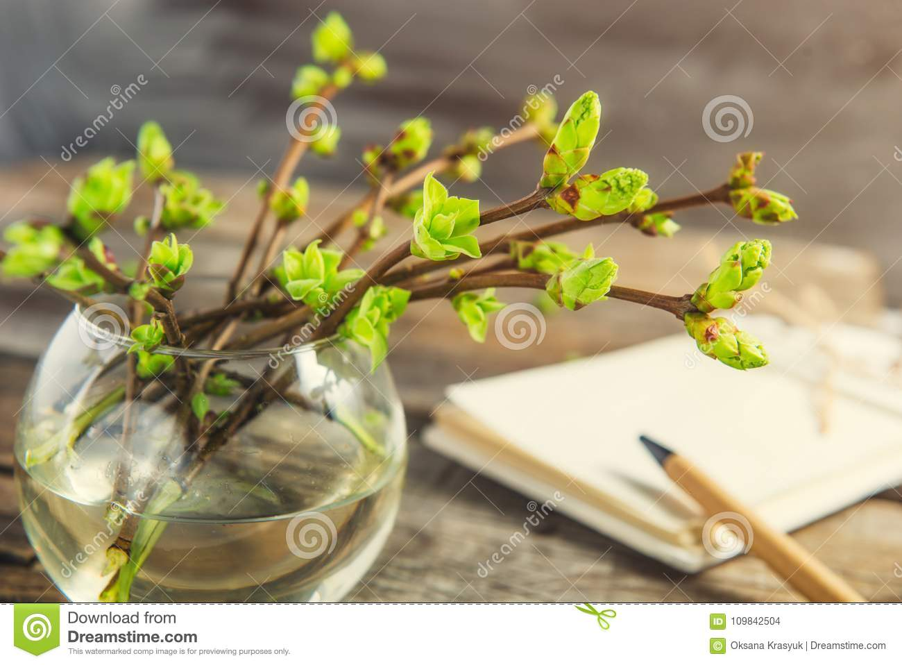 Vase with branches with young shoots of greenery and blurred notebook on the rustic wooden table. Spring awaking concept. Vintage