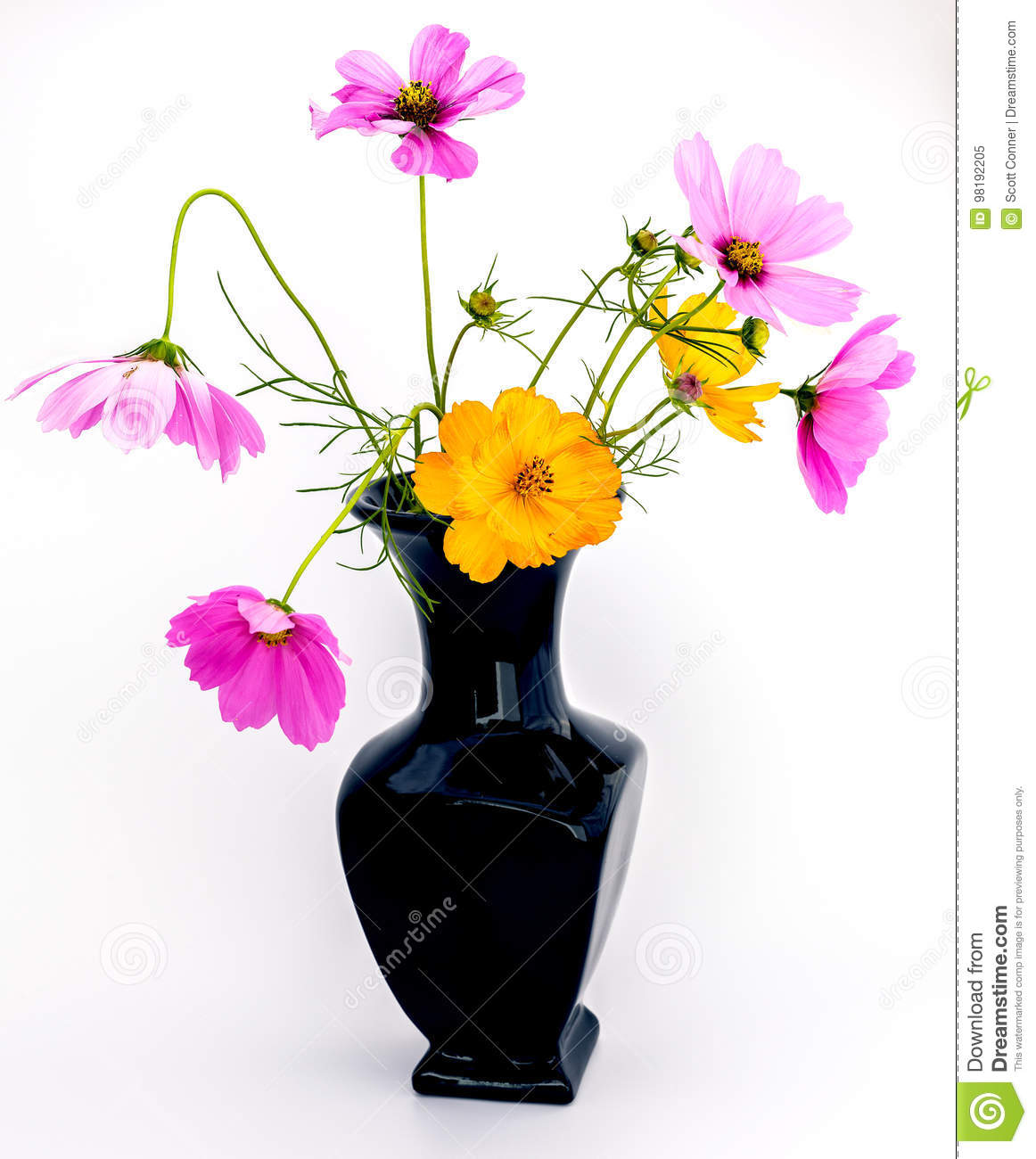 Vase Of Purple And Orange Wild Flowers Stock Image Image Of Summer
