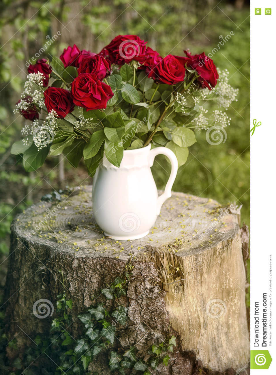 Vase with red roses on tree stump stock photo image 73808224 vase with red roses on tree stump reviewsmspy
