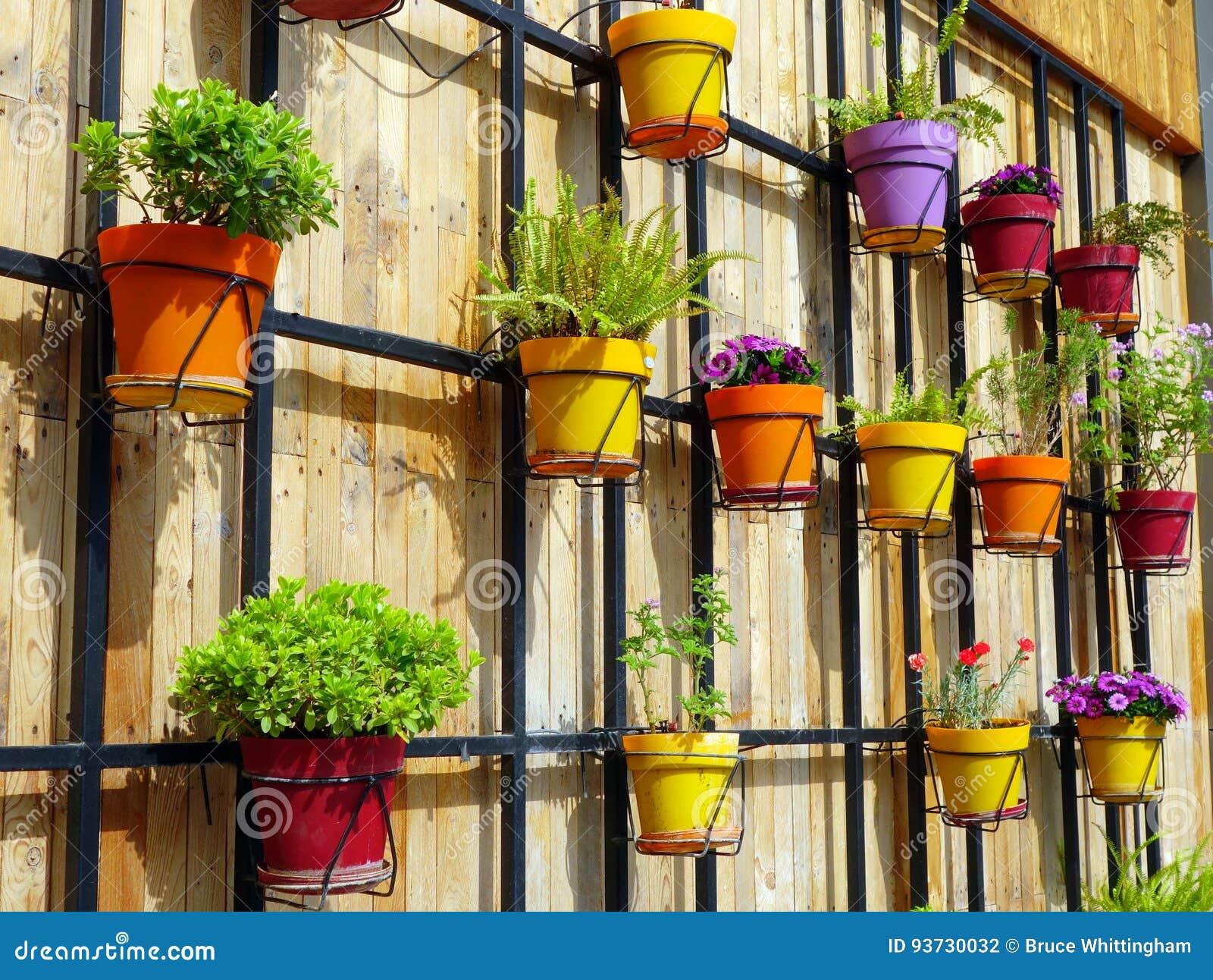 Vasi da fiori Colourful sulla parete di legno