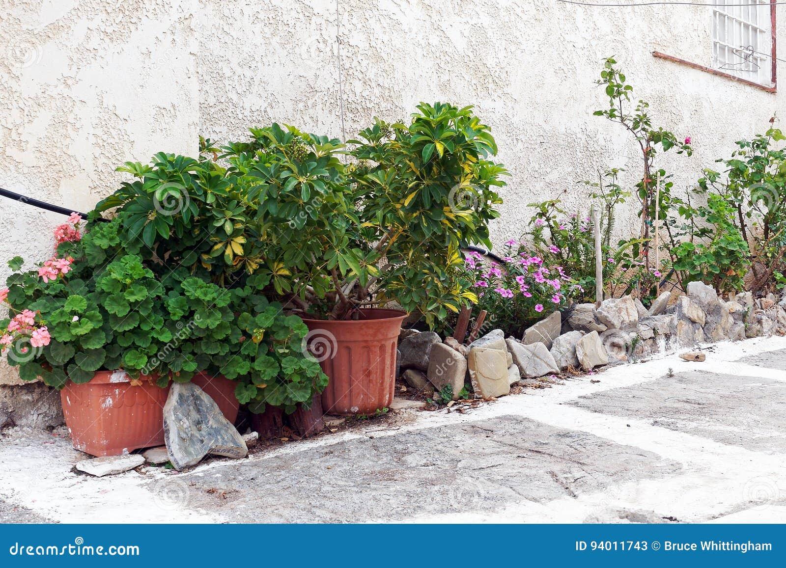 Vasi Da Giardino Colorati vasi da fiori e giardino fuori della camera immagine stock