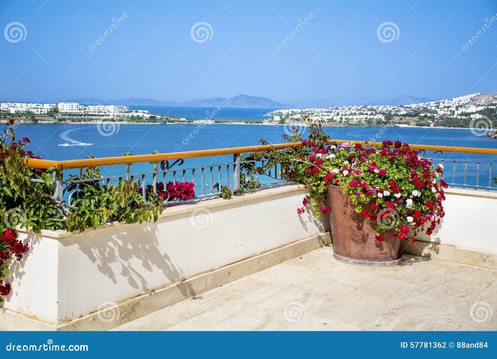 Vaso di argilla con i fiori di fioritura del geranio su un