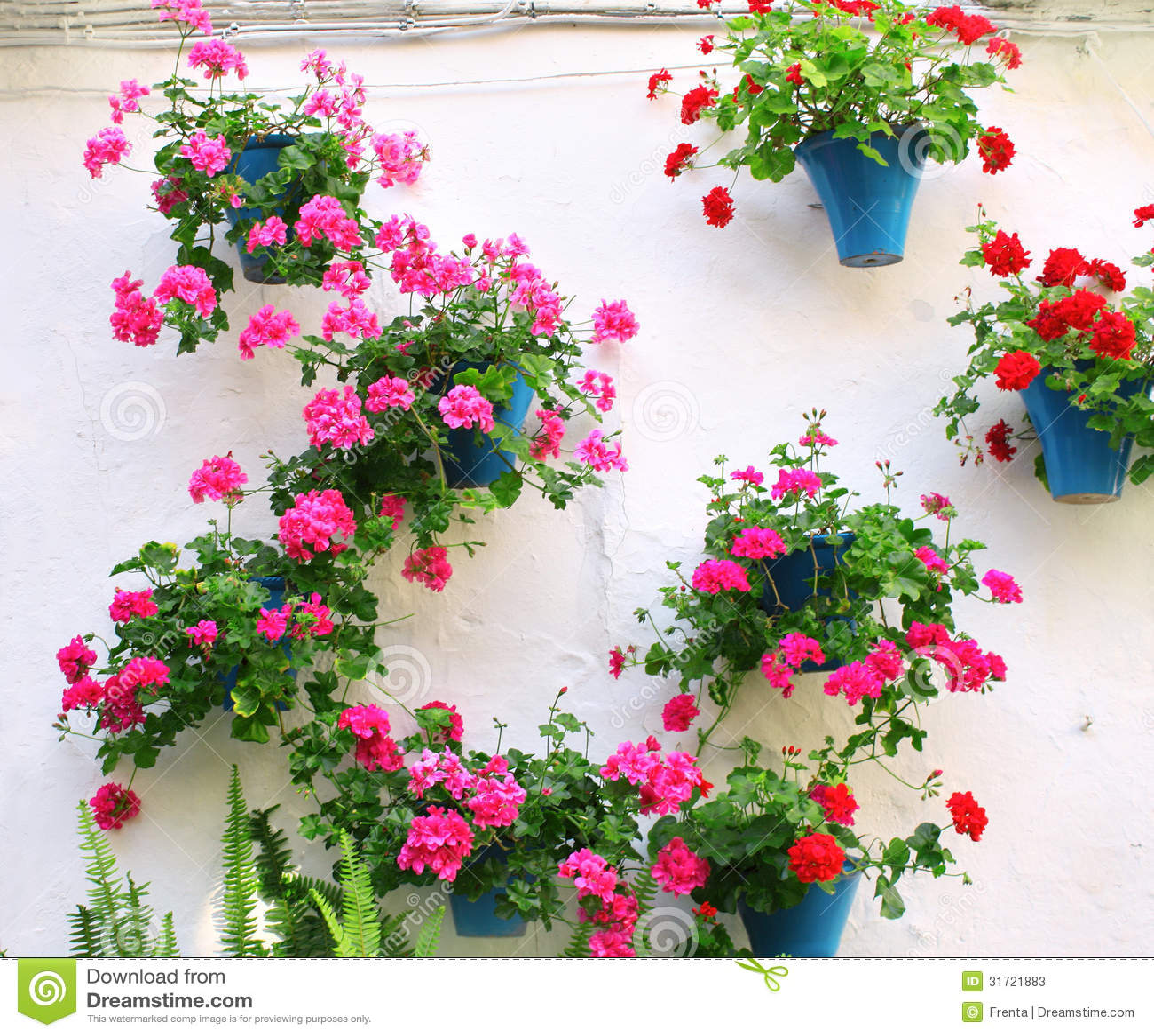 Vasos De Flores Com Ger 226 Nio Imagem De Stock Imagem De
