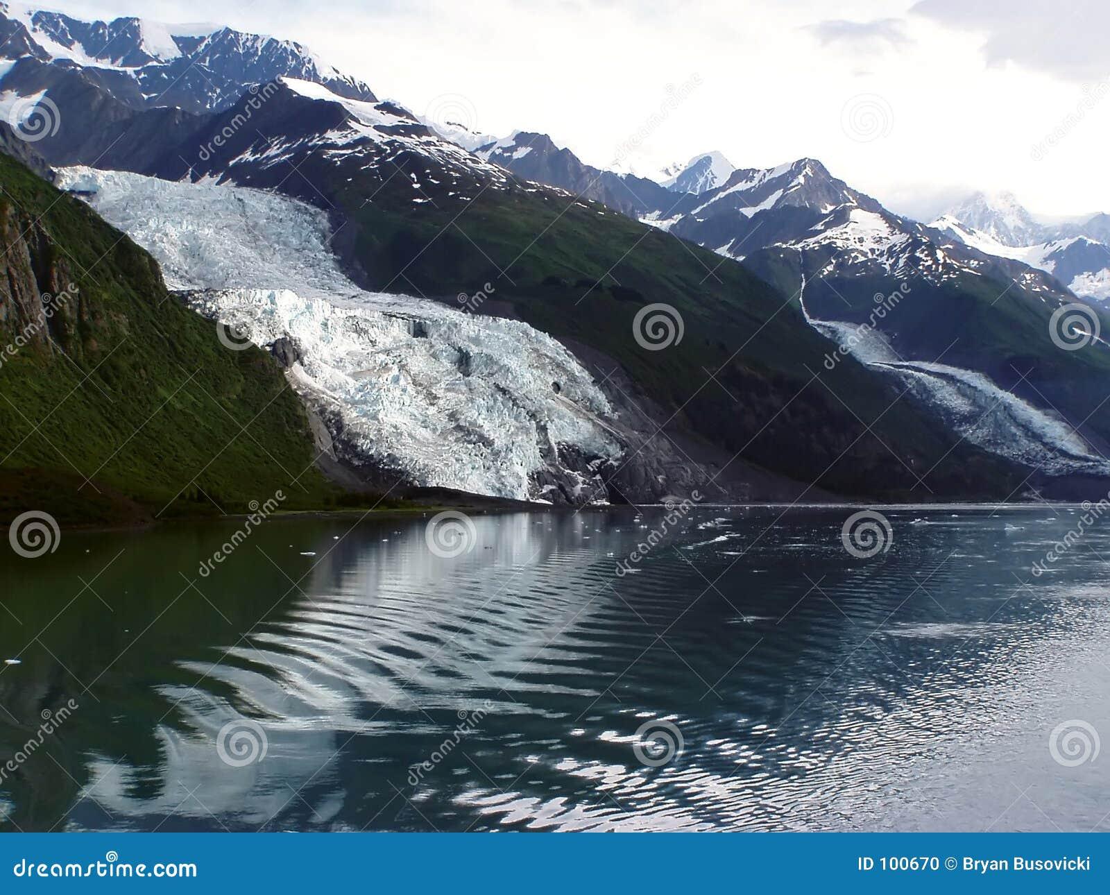 Vassar Gletscher - Hochschulfjord, Alaska
