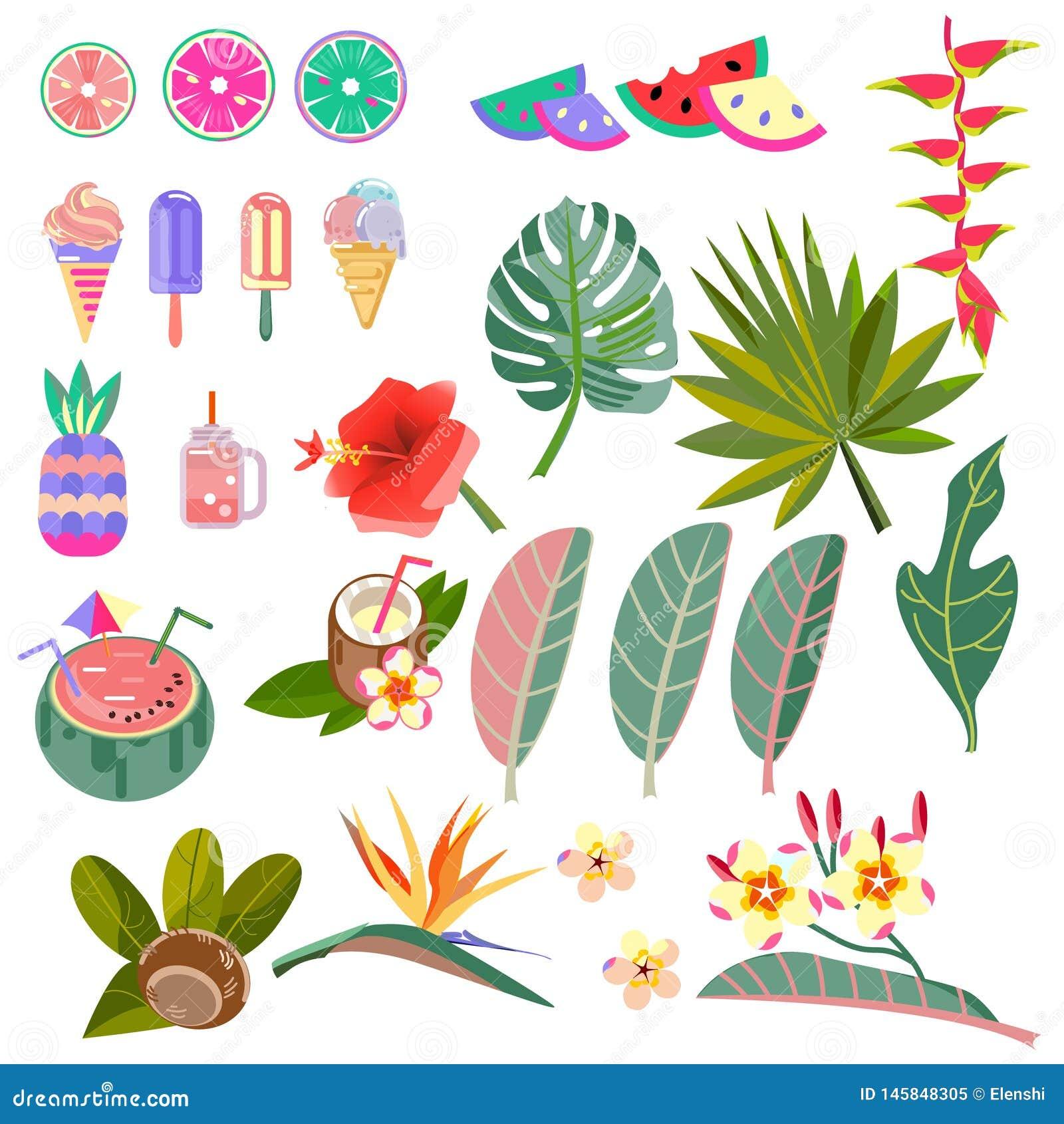 Vastgestelde vectorbeelden van bladeren, bloemen en vruchten Stylization het Caraïbische tuinieren