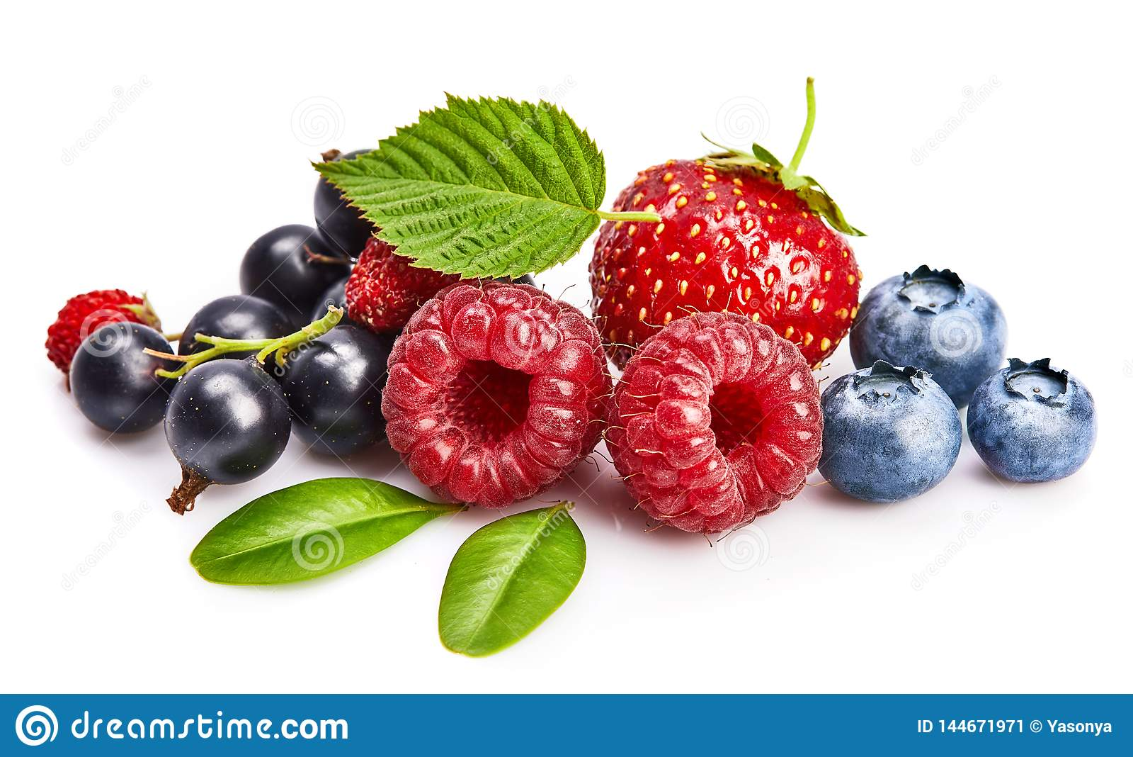 Vastgestelde verse bes Framboos van het mengelings de zomerse fruit