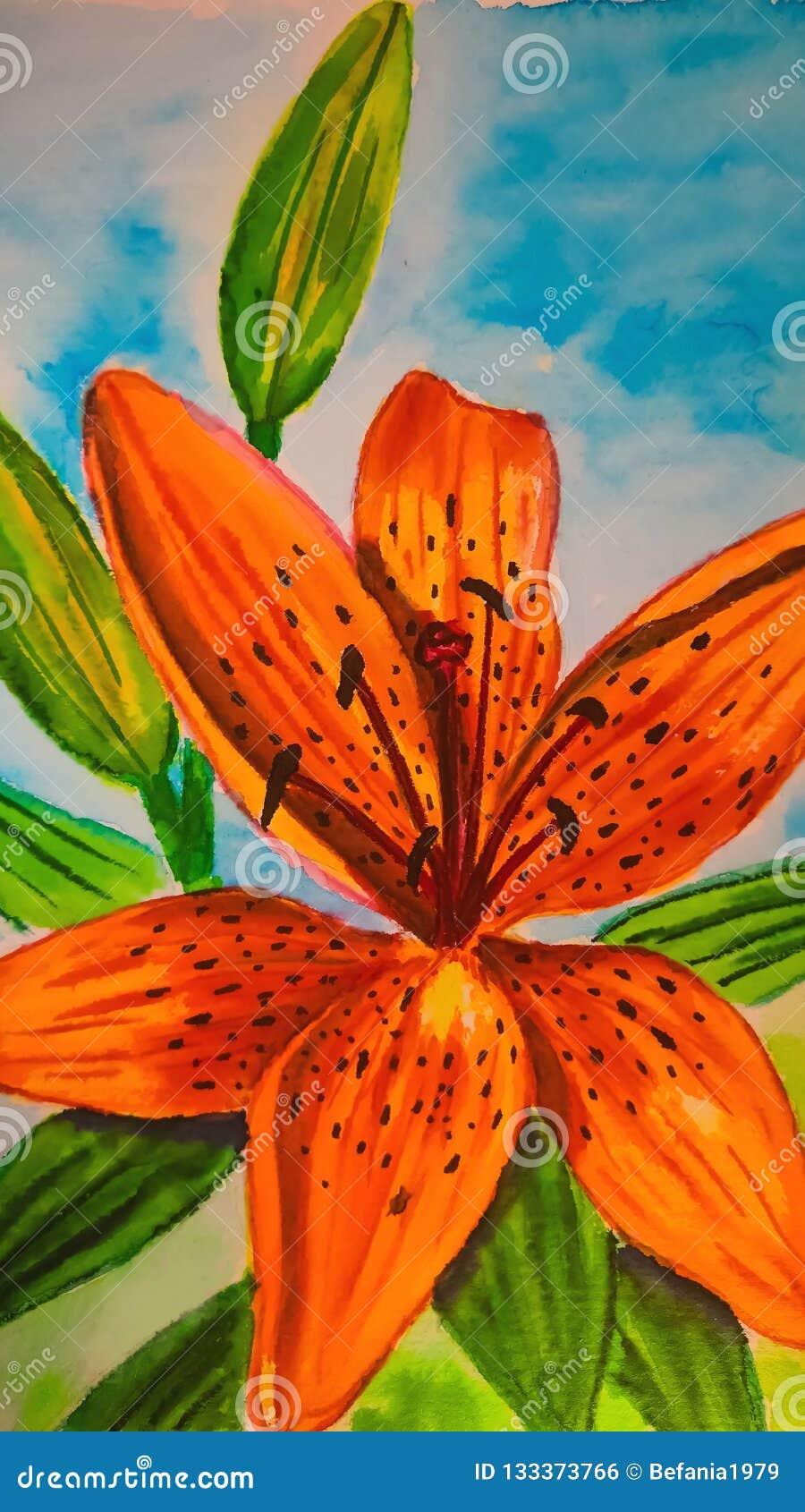Vattenfärg Tiger Lily på skybluebakgrunden