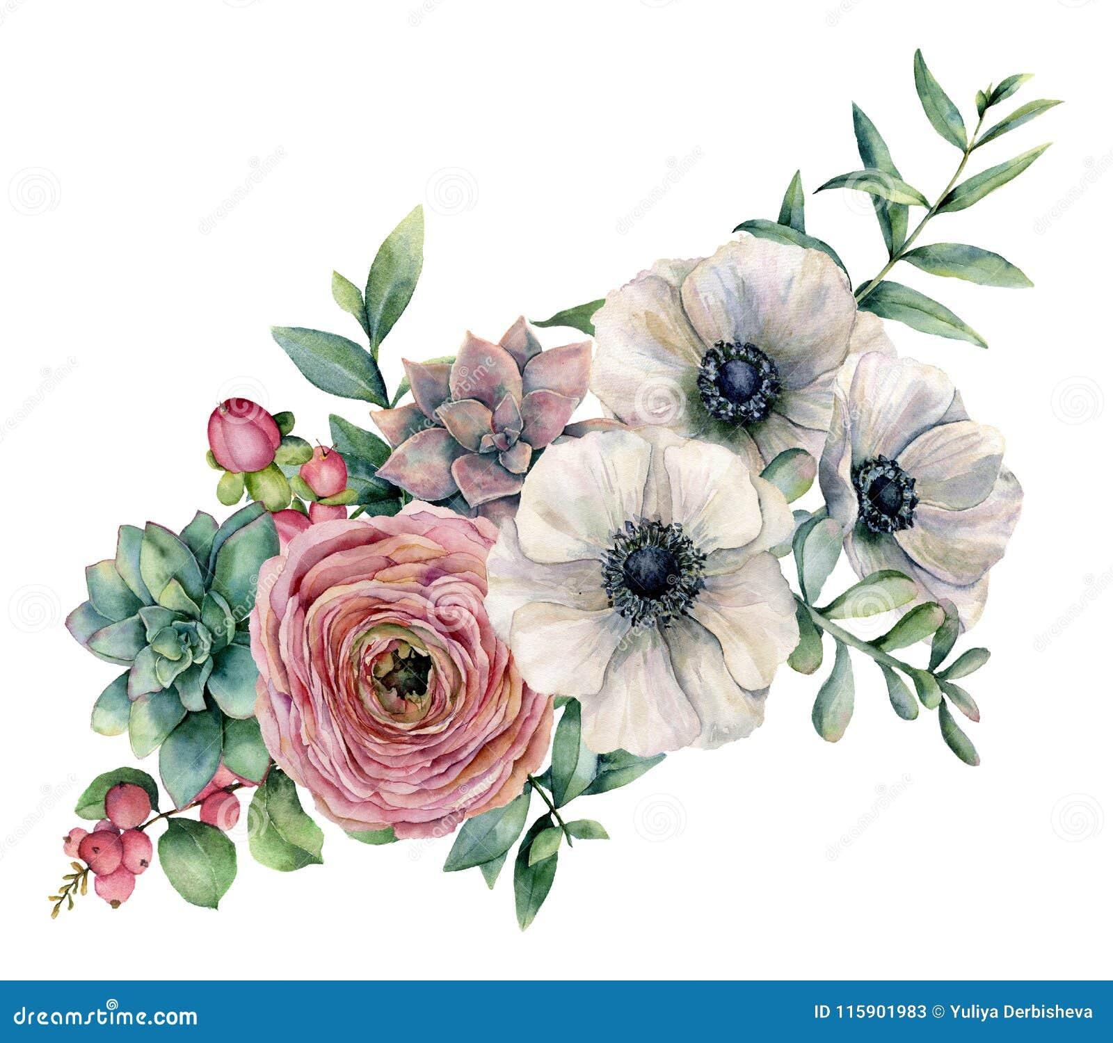 Vattenfärgbukett med suckulenten, ranunculusen och anemonen Den målade handen blommar, eucaliptussidor och den suckulenta filiale