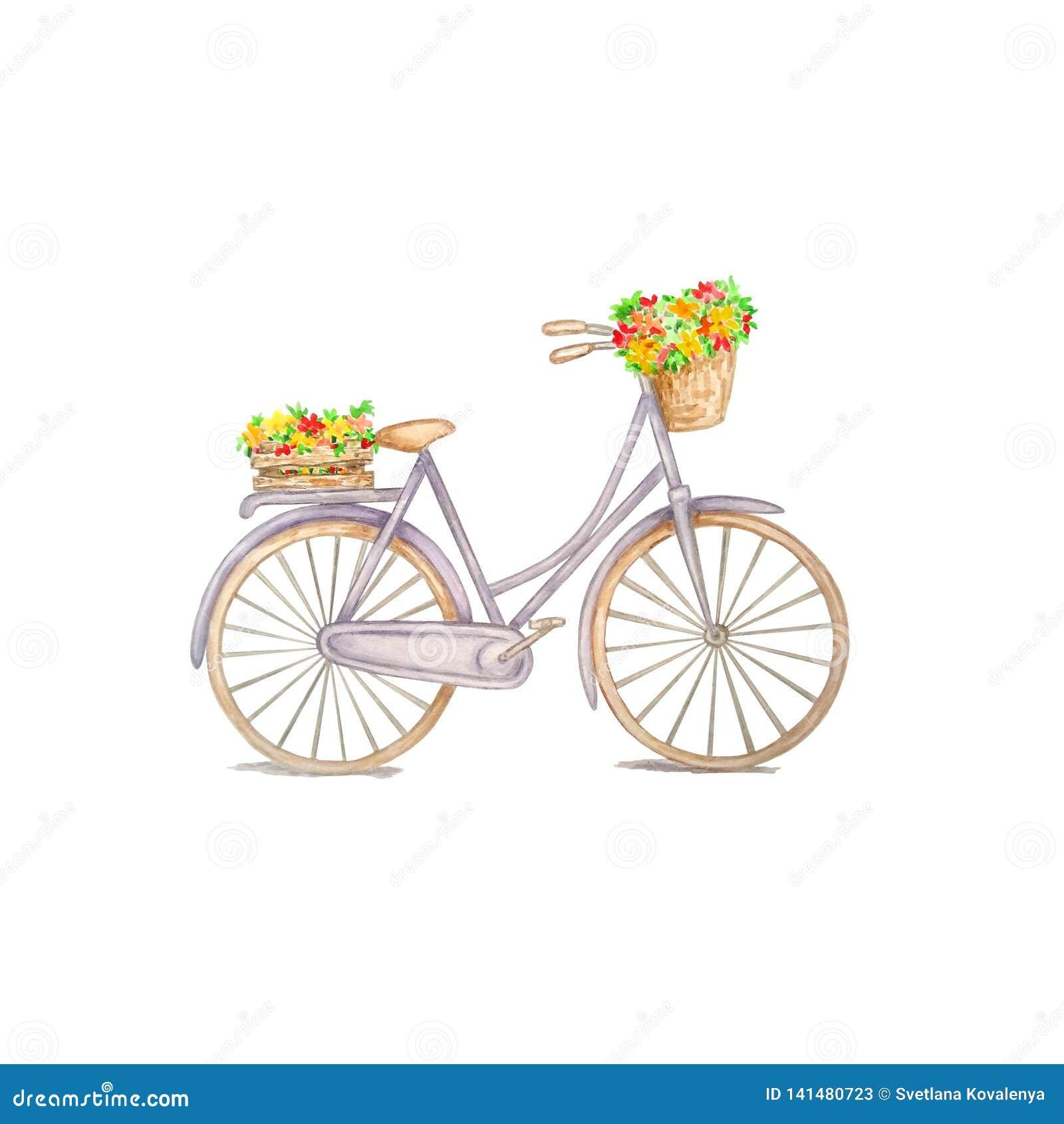 Vattenfärgcykel med blommor