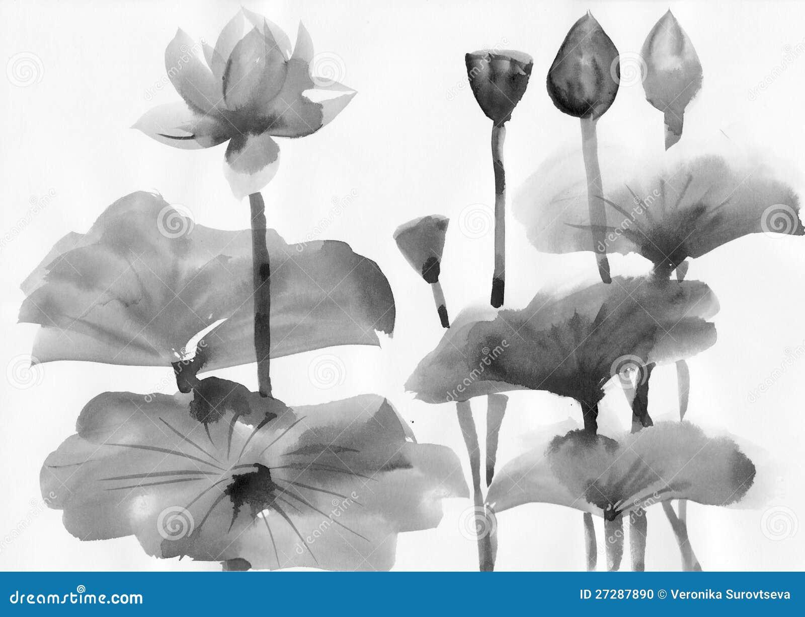 Vattenfärgmålning av lotusblommablommor