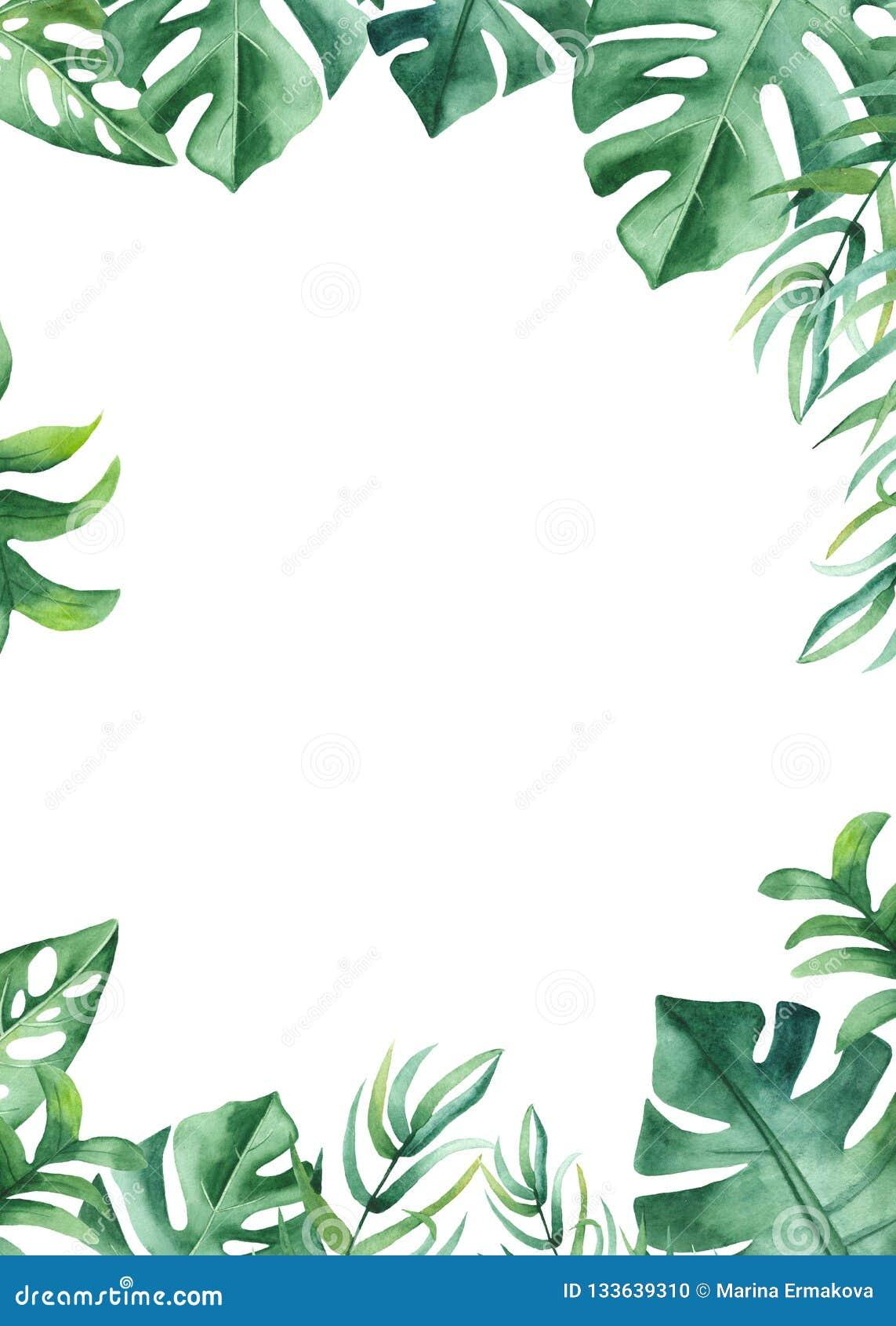 Vattenfärgram med tropiska sidor och blommor, vattenfärgfläckar