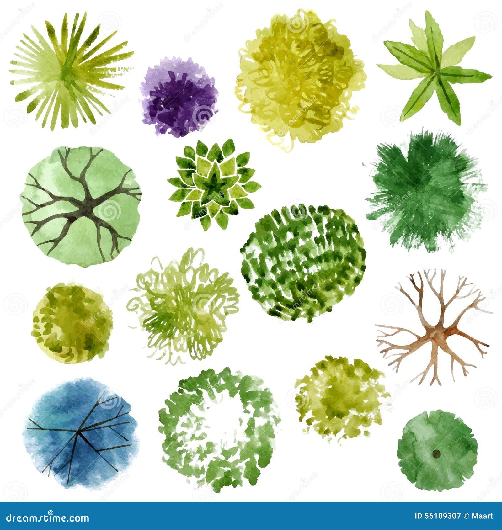 Vattenfärgträd för dina egna landskapdesgns