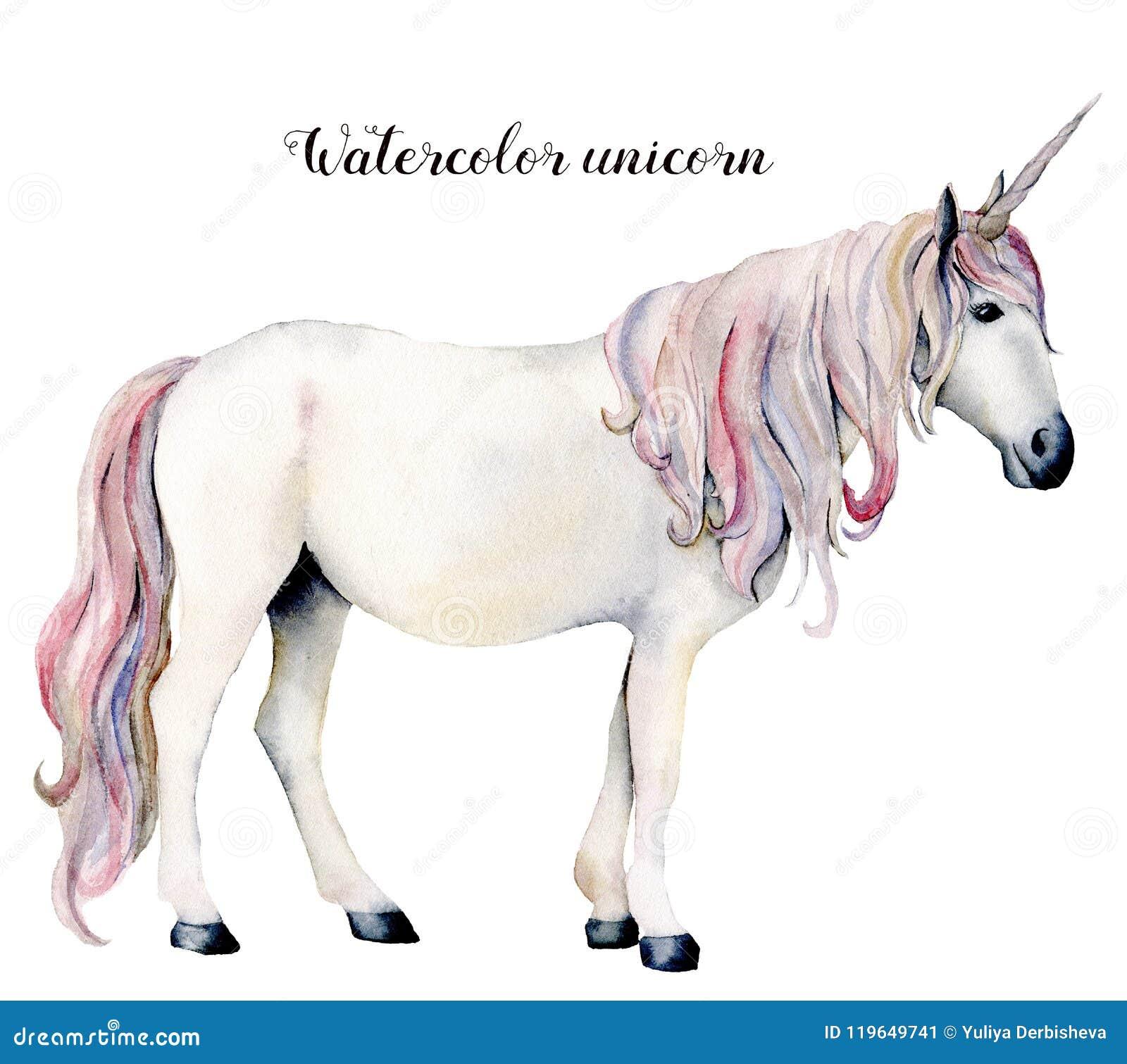 Vattenfärgvitenhörning Räcka den målade magiska hästen som isoleras på vit bakgrund Sagofigurillustrationdesign