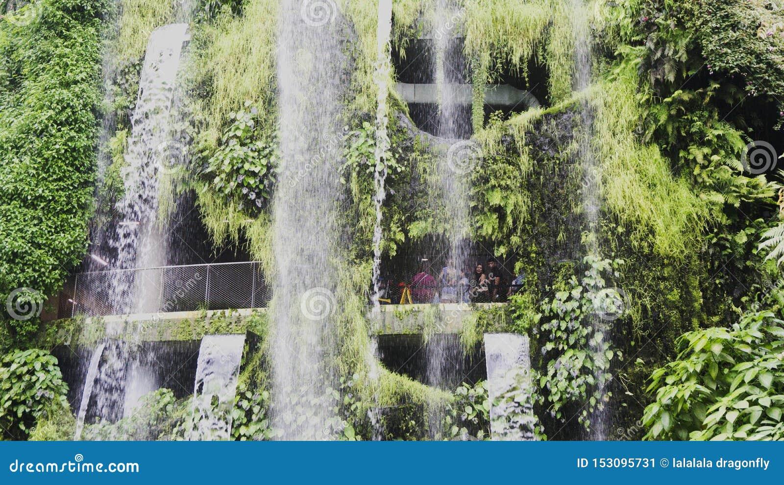 Vattenfall i molnet Forest Garden By fjärden i Singapore