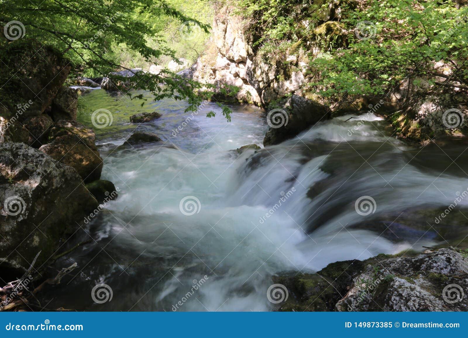 Vattenfall i skogsommarturen som värme Krim