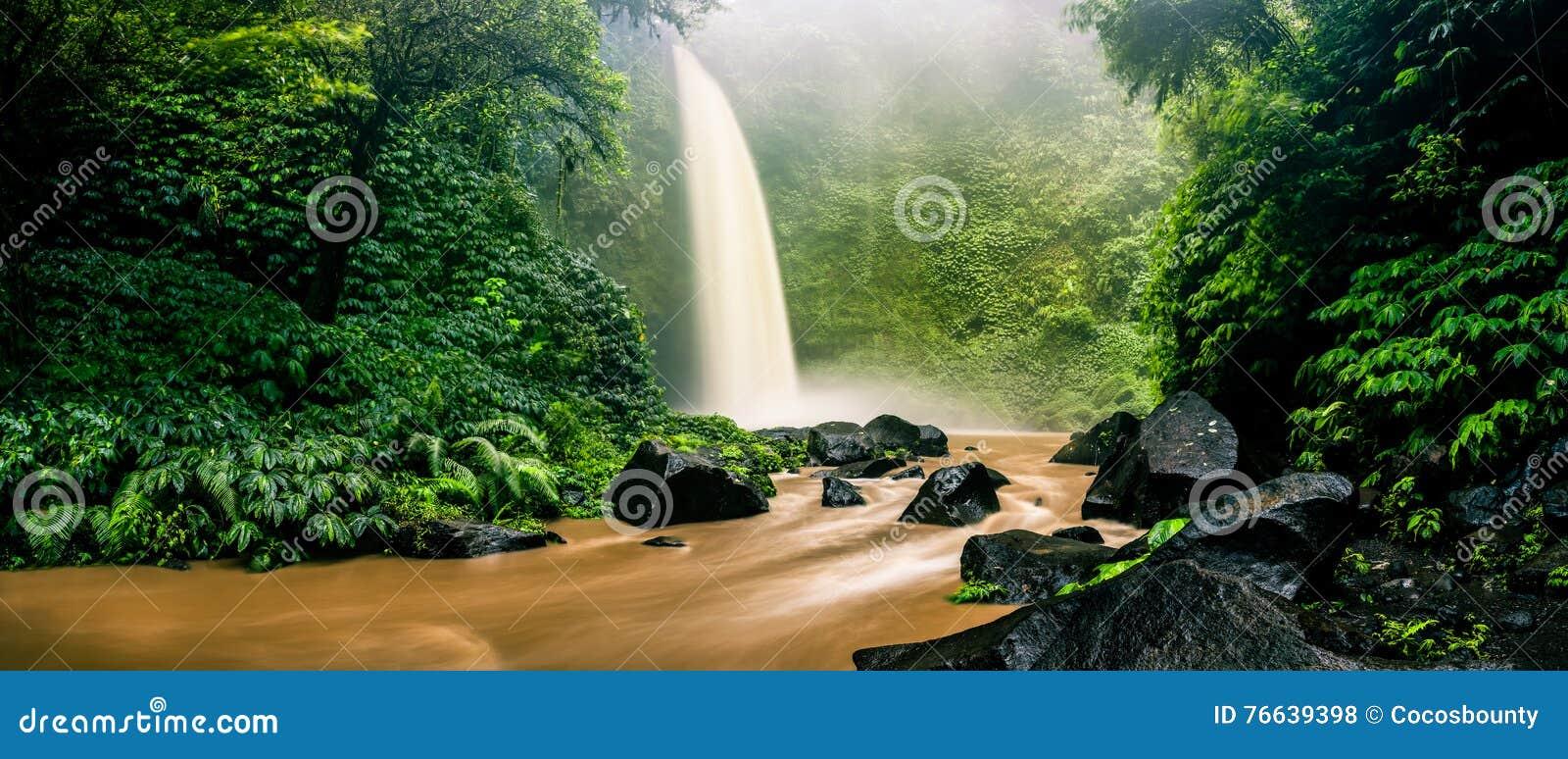 Vattenfallkaskad som döljas i tropisk djungel på naturen och berget för skog för bakgrundsgräsplanträd