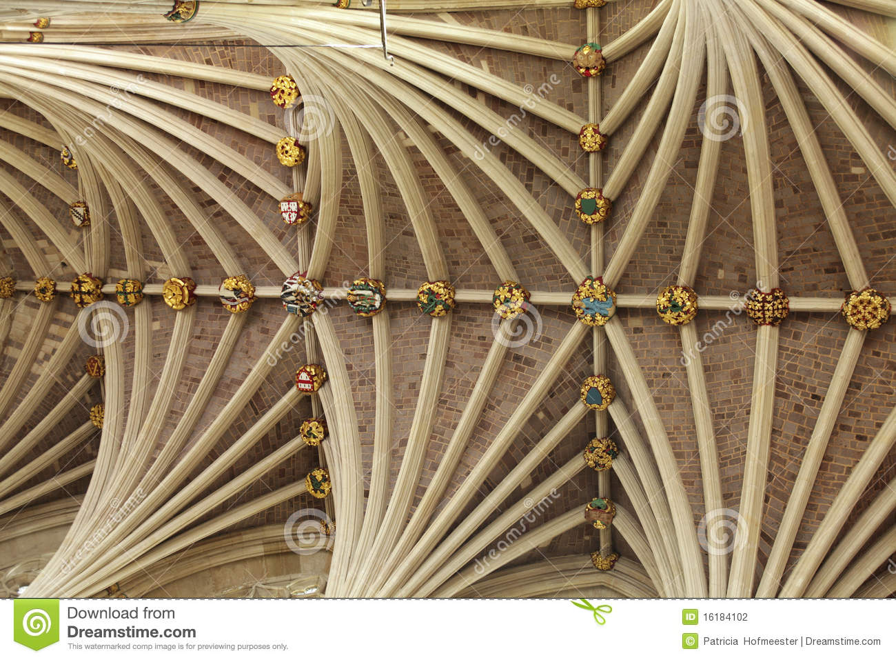 Vaulted Ceiling Of Exeter Cathedral In Devon Stock Photography - Image ...