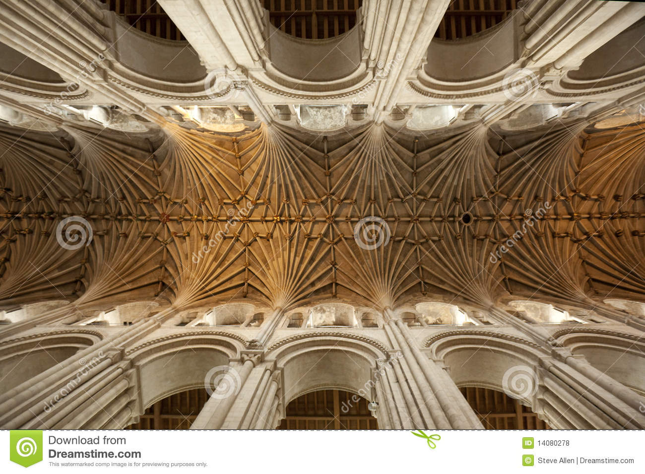 vaulted ceiling   norwich cathedral   england stock photo