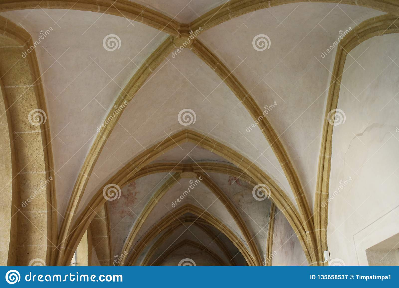 Vaults of Church of Presentation of the Blessed Virgin Mary in České Budějovice, South Bohemia