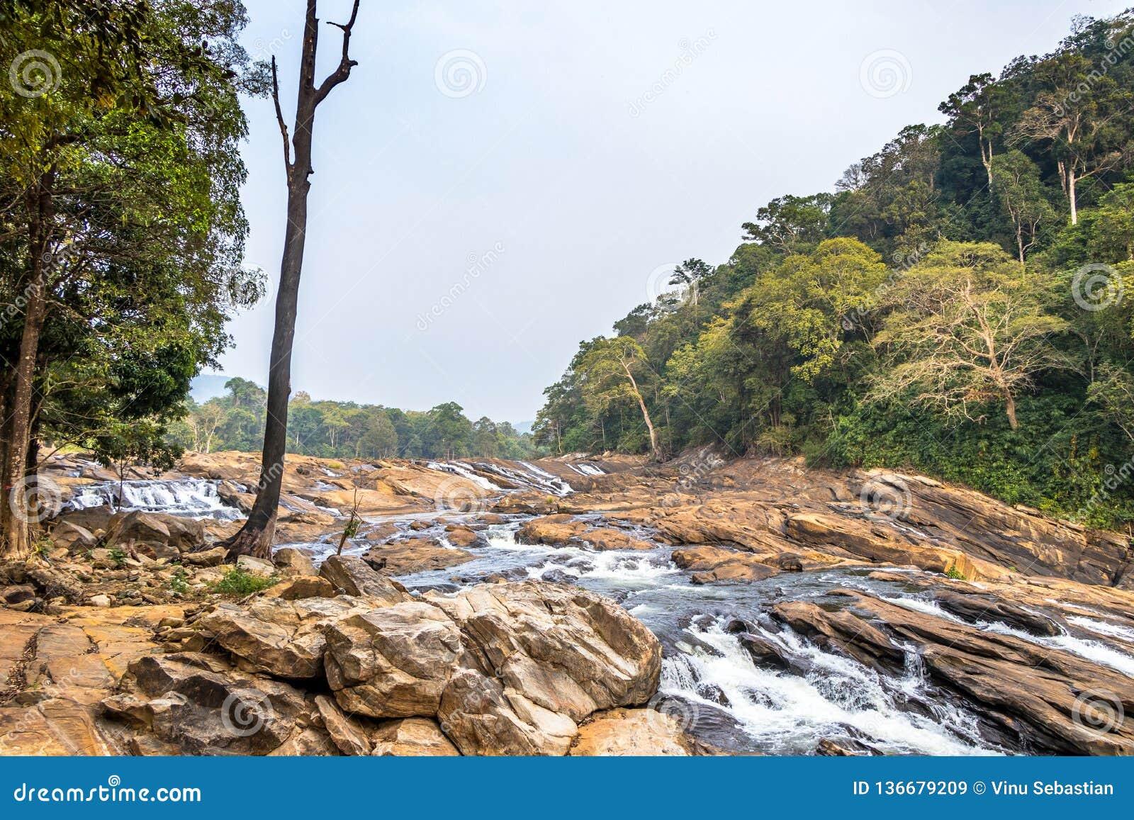 Vazhachal nedgångar placeras i Athirappilly Panchayath av det Thrissur området i Kerala på sydvästkusten av Indien