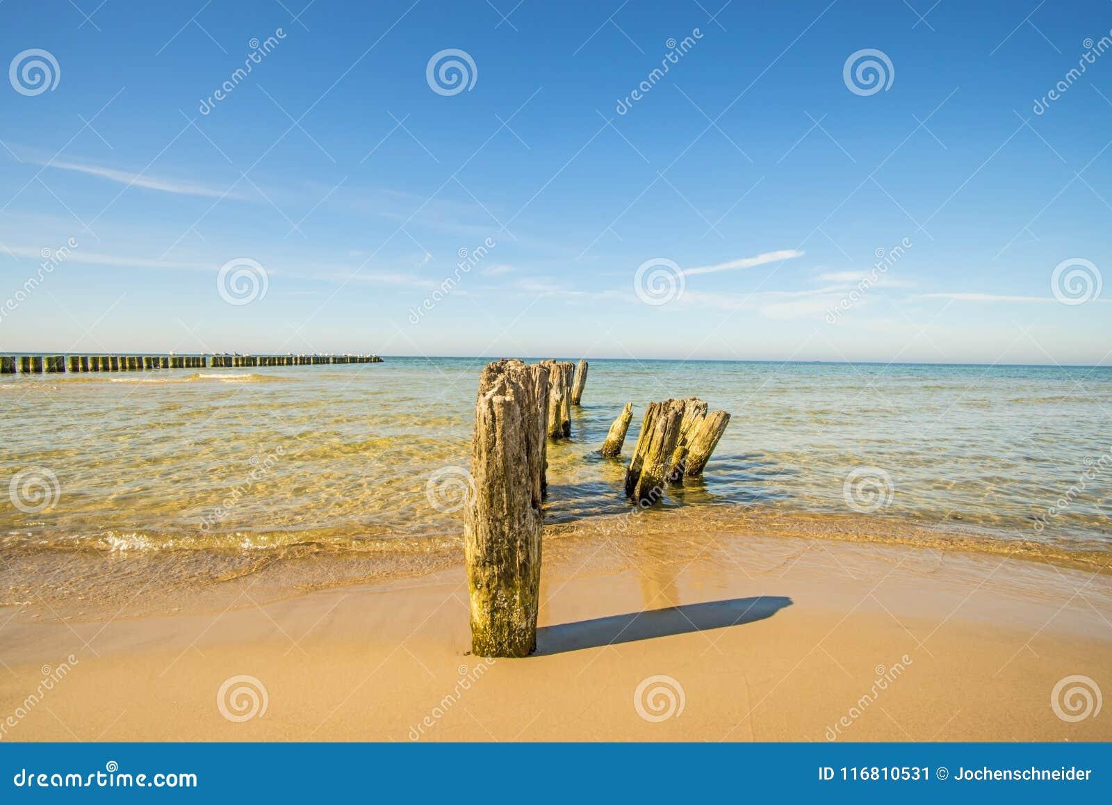 Vecchi inguini nel Mar Baltico con cielo blu
