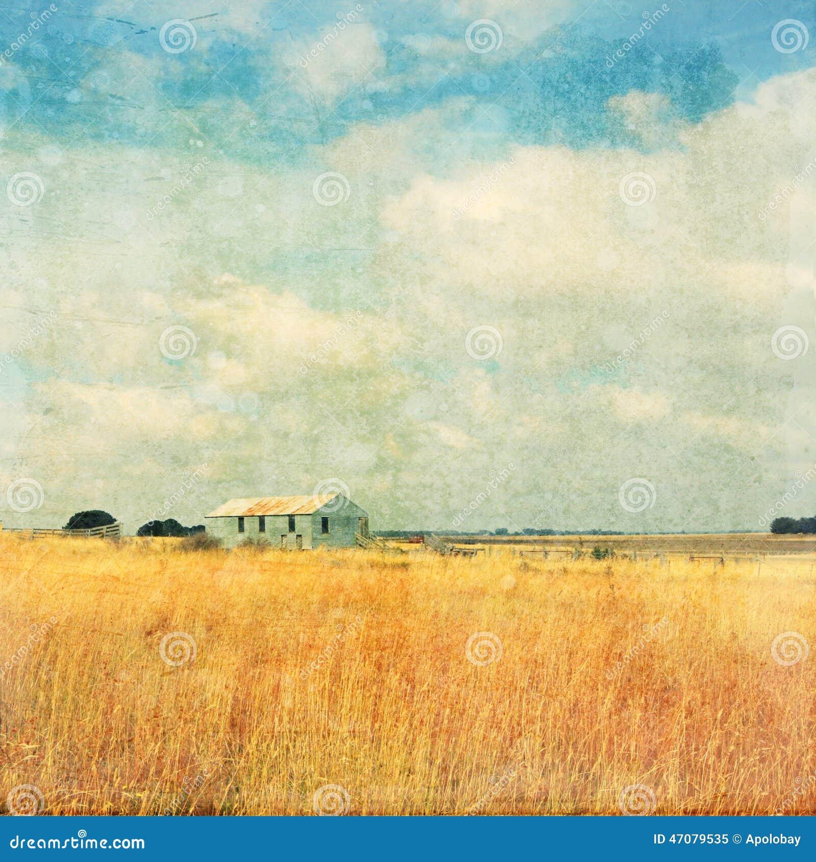 Vecchia azienda agricola nell effetto dell annata del campo