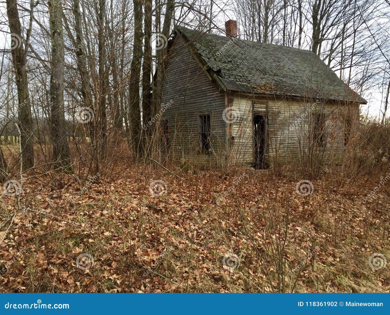 Vecchia cabina nel legno in Maine