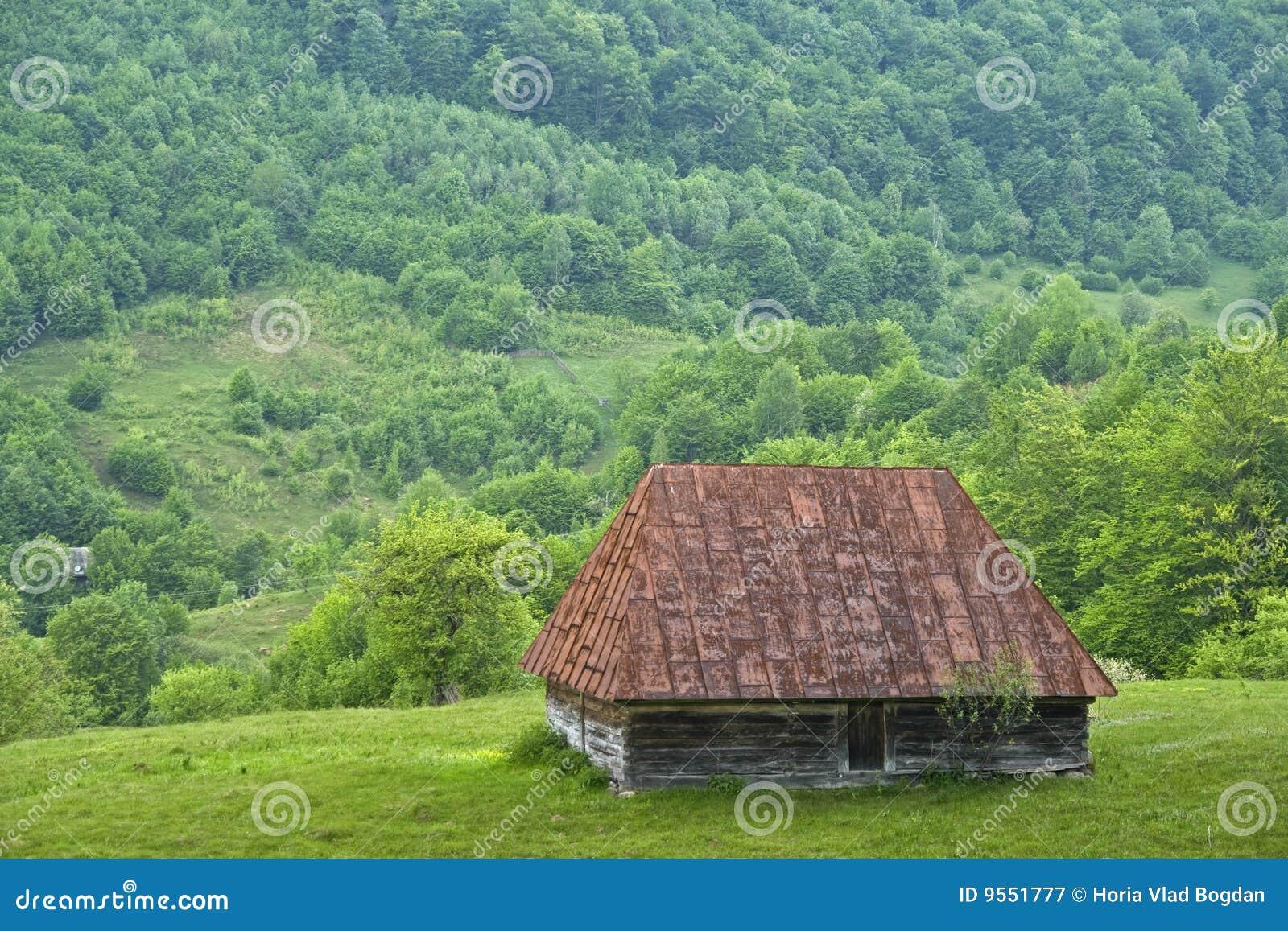 Vecchia casa della campagna della montagna - Romania