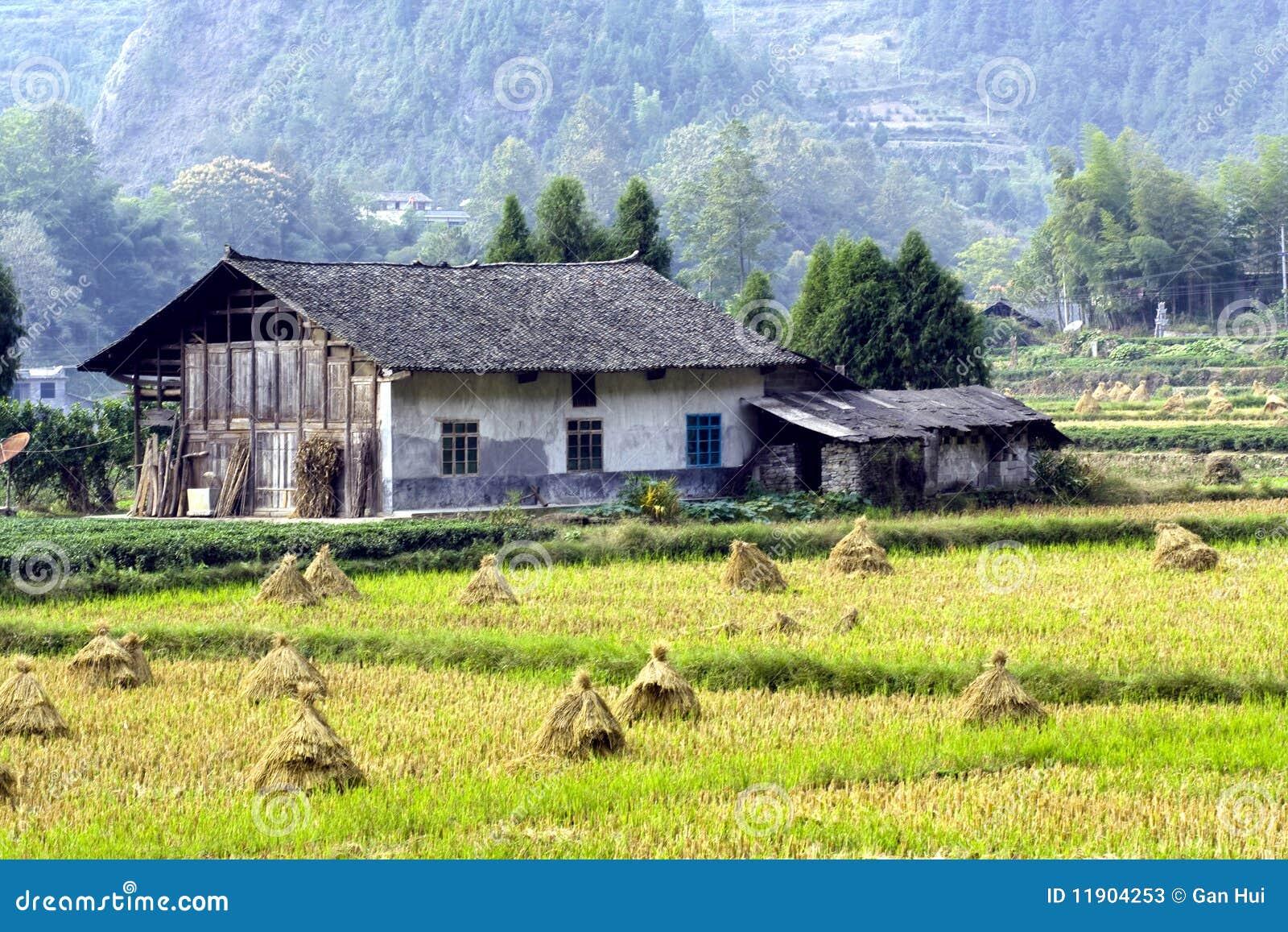 Vecchia casa nell azienda agricola